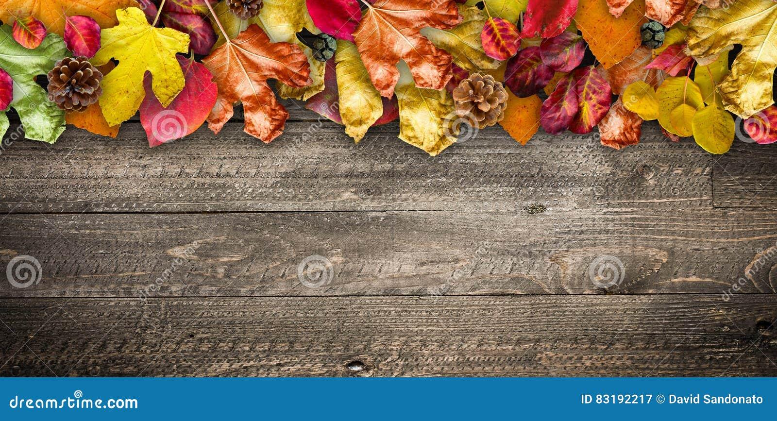 Autumn Leaves över en naturlig mörk träbakgrund Gammal smutsig trätabeller eller parkett