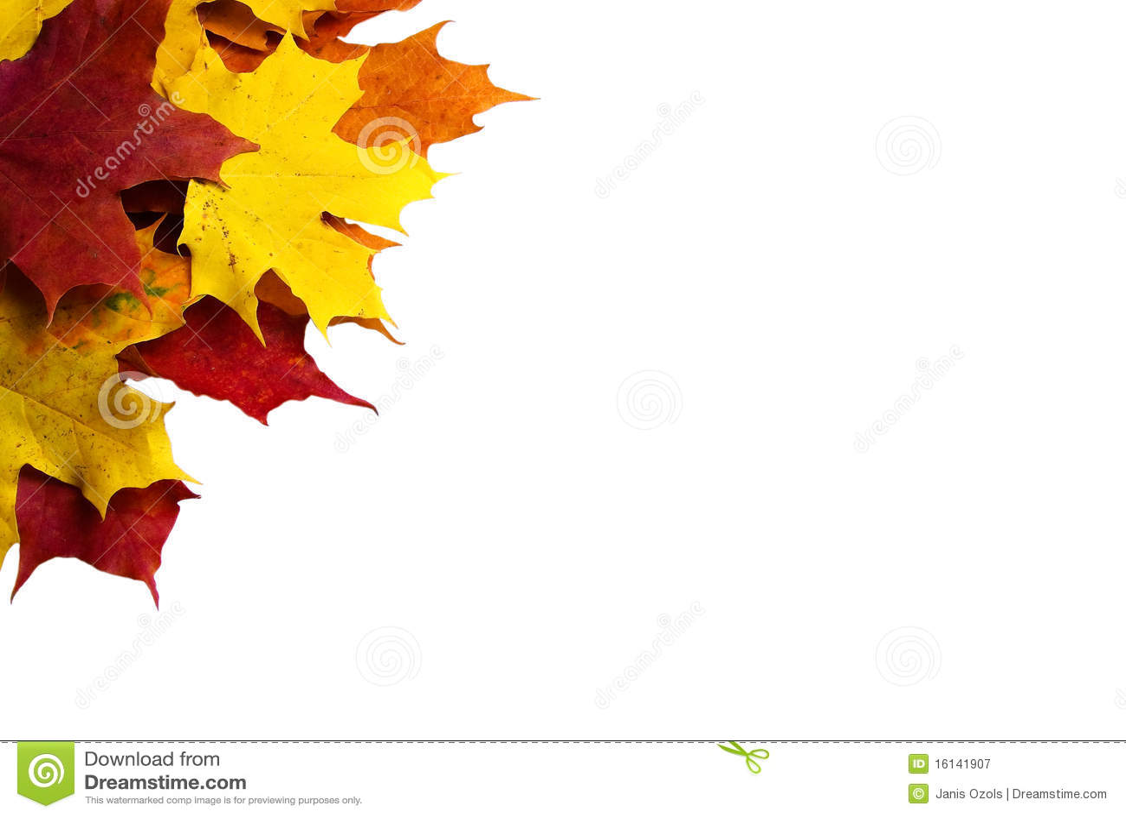 Autumn Leaves Corner Border