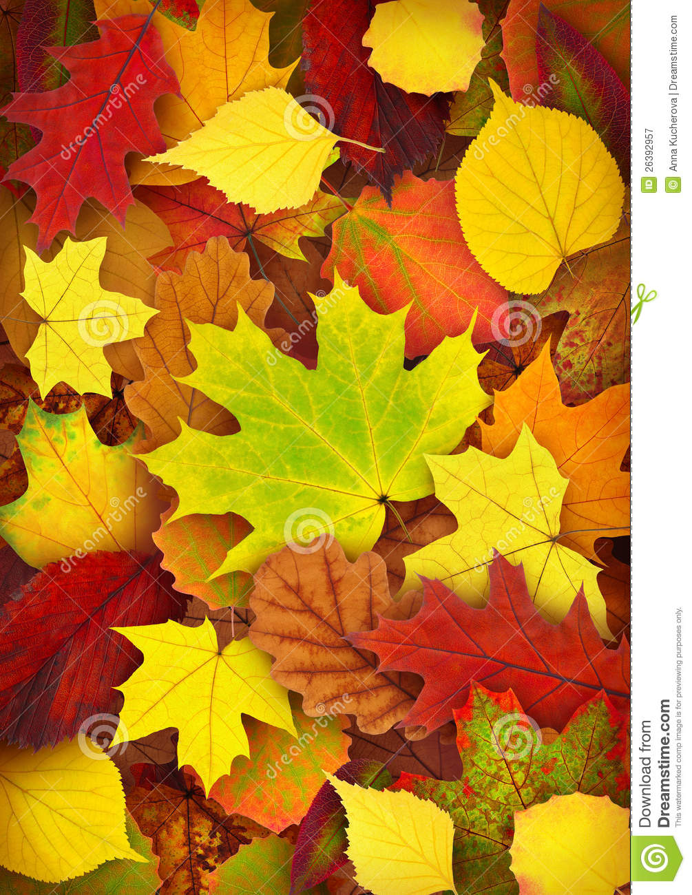 autumn leaves stock image image of texture  ground  fall fall season clipart black and white Fall Graphics