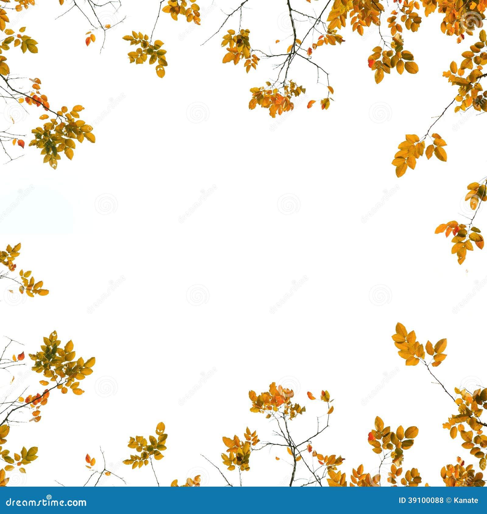 Autumn Leaves-achtergrond