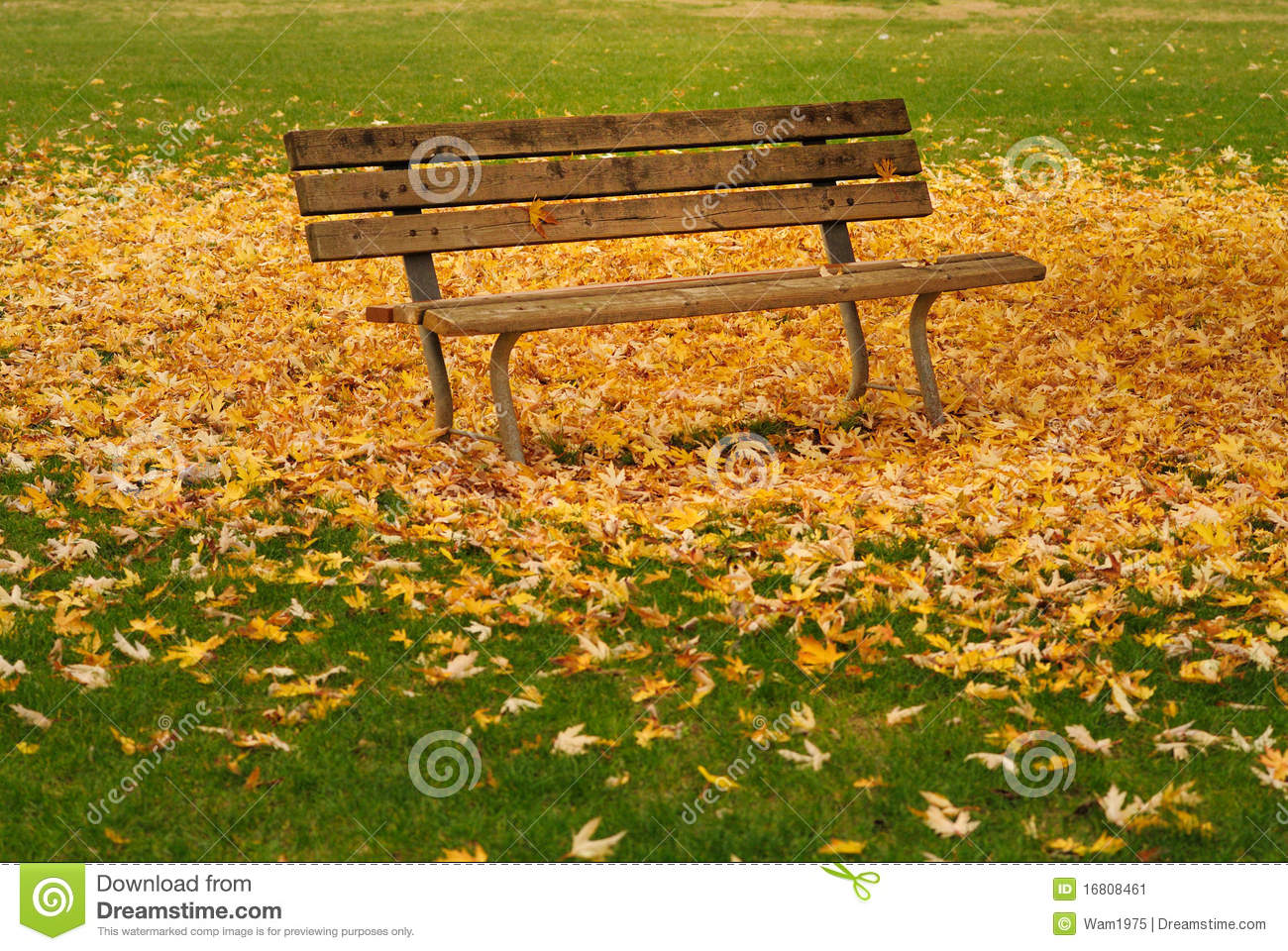 autumn leaves on bench - photo #28
