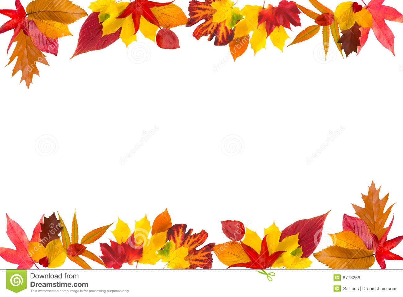 Autumn Leaves Border Stock Photo Image Of Biology