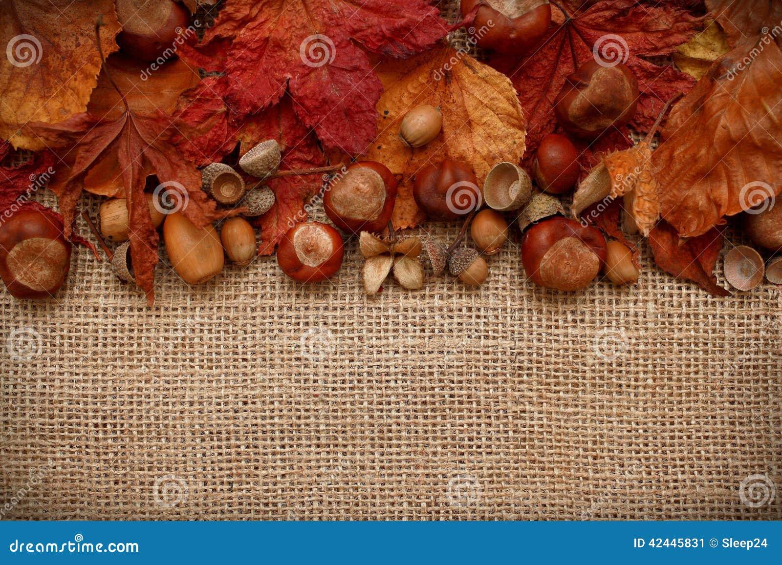 Autumn Leaves Chestnuts y bellotas sobre fondo del yute