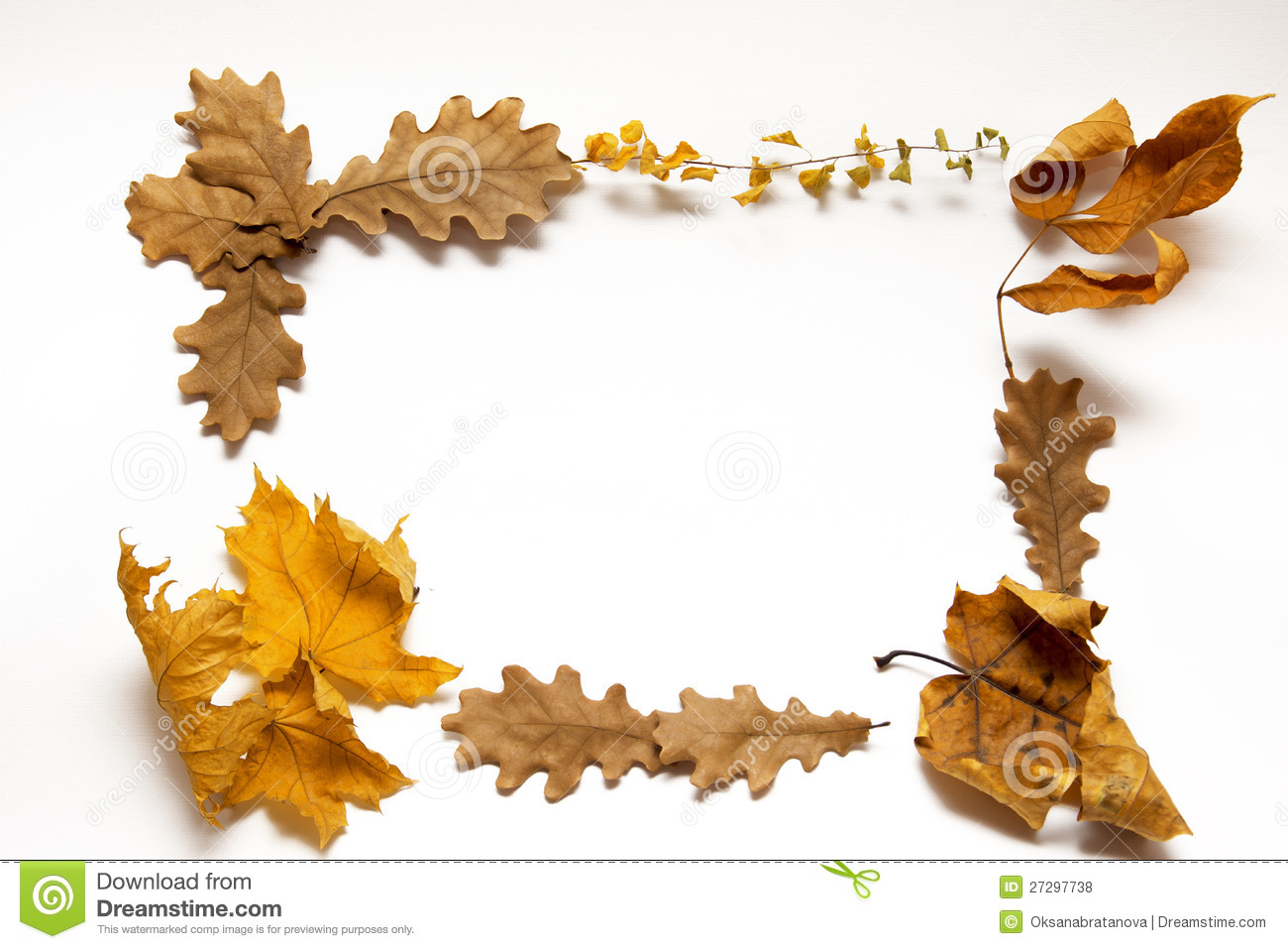 Download Autumn leaves frame stock photo. Image of fall, foliage - 27297738