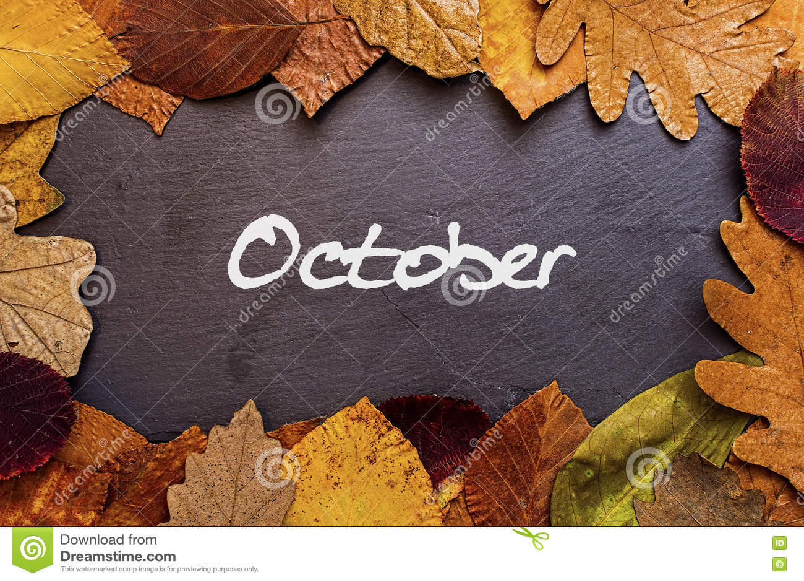 Autumn Leaves Frame on Dark Stone Background. October Concept Wallpaper.