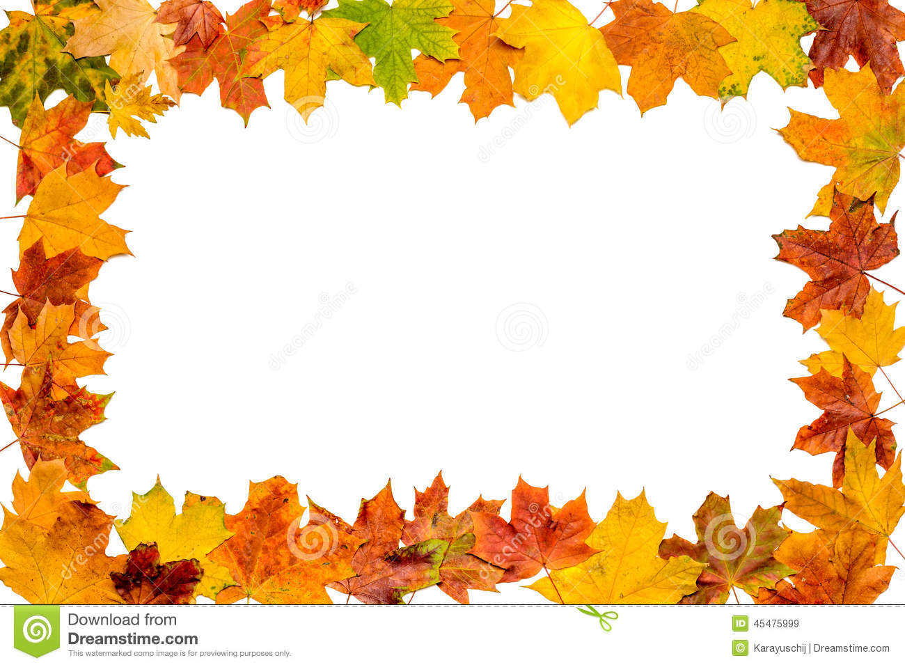 Download Autumn Leaves Frame stock image. Image of green, forest - 45475999