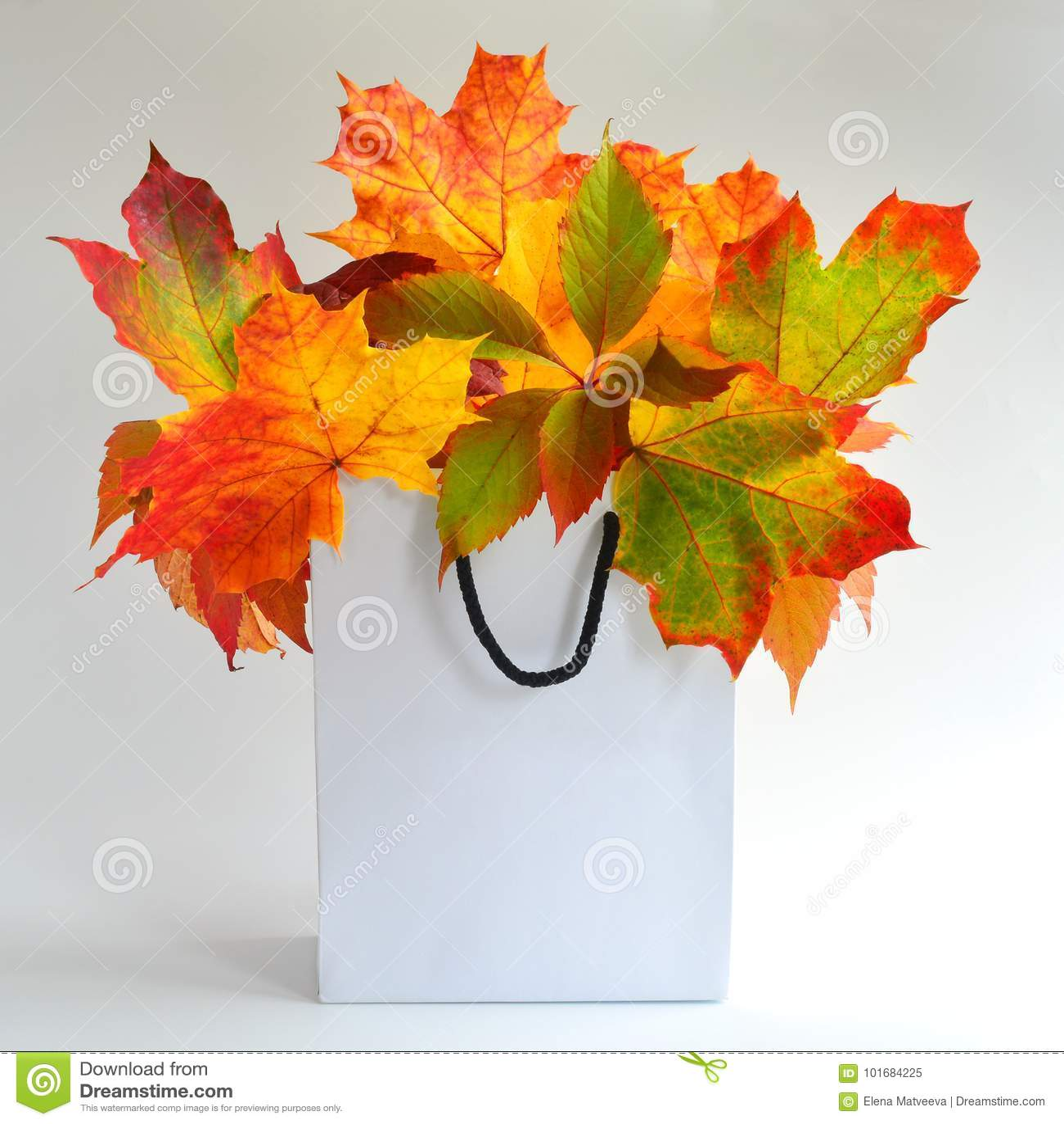 Autumn Leaves Mock Up