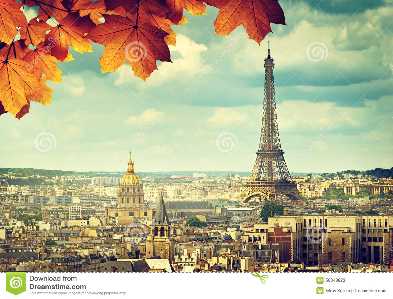 Autumn Leaves In Paris And Eiffel Tower Stock Image