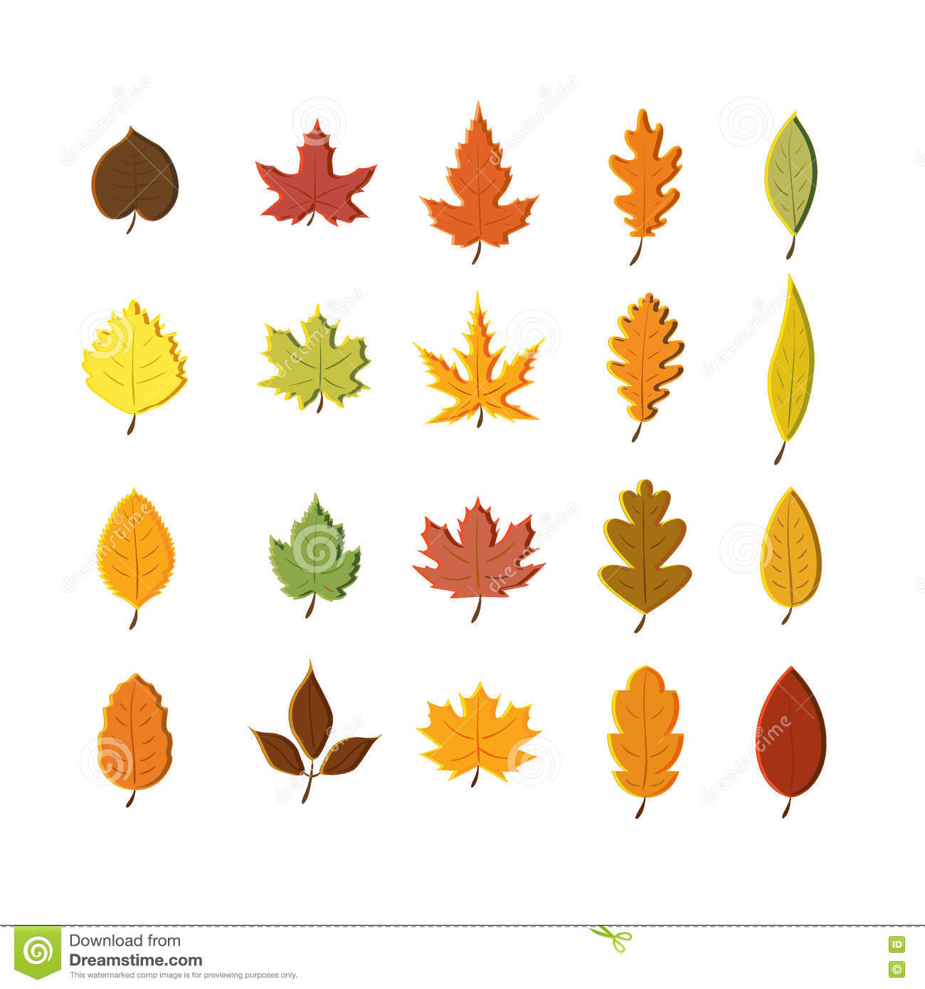 autumn leaves set isolated on white background simple cartoon flat rh dreamstime com fall leaves cartoon pics fall leaves border cartoon