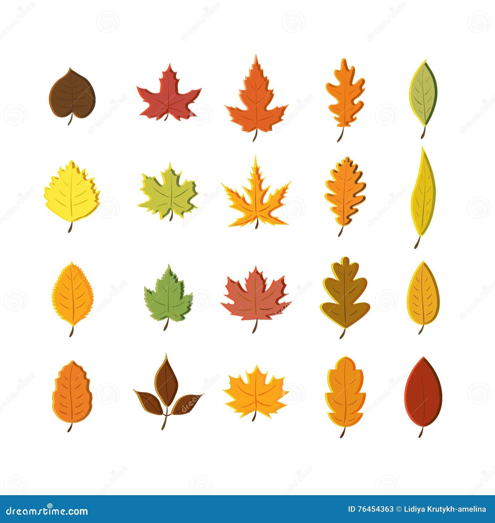 autumn leaves set isolated on white background simple cartoon flat rh dreamstime com fall leaves cartoon pictures fall leaf cartoon