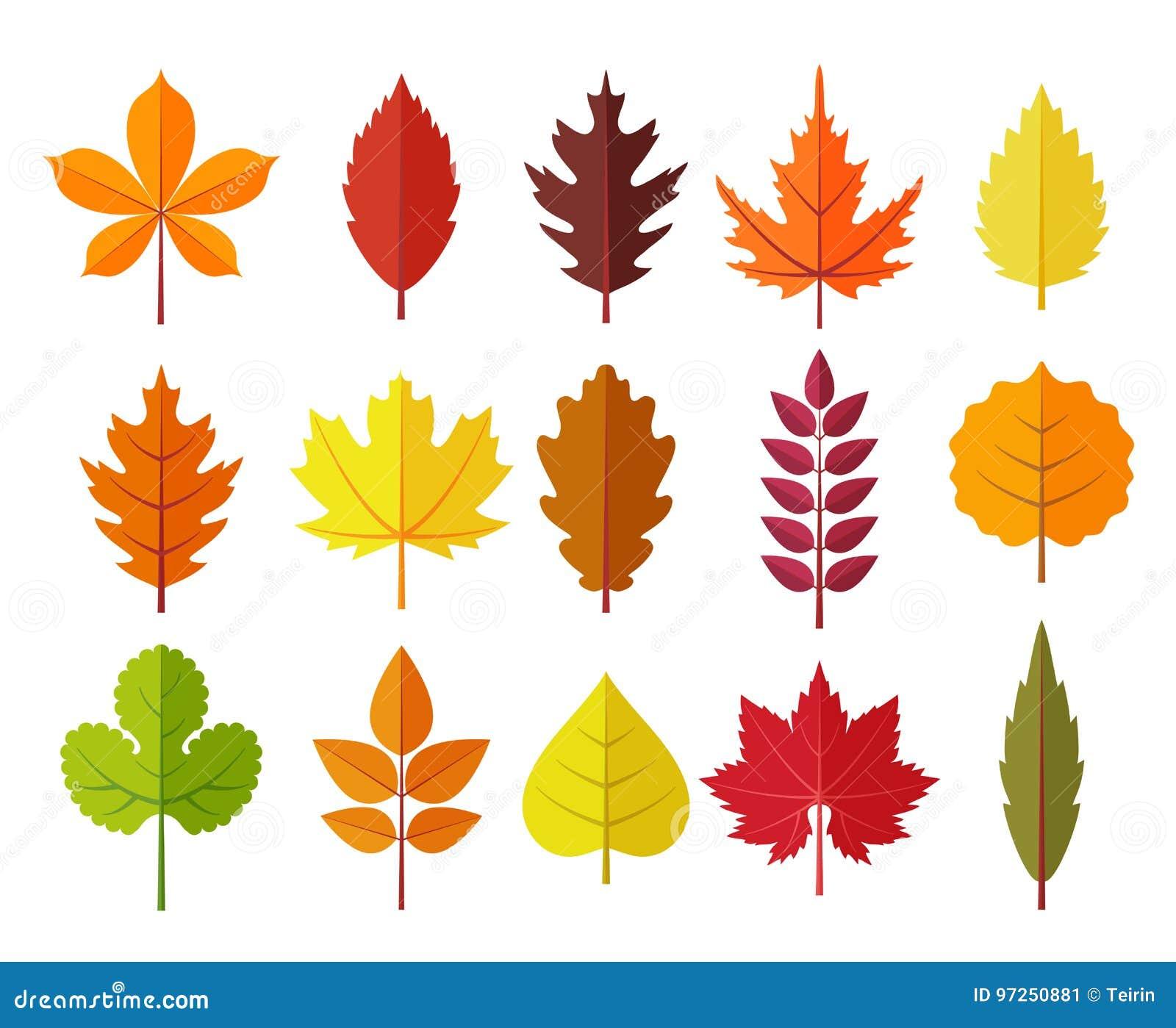 Autumn Leaves Set Isolated On White Background Simple Cartoon Flat Style Vector Illustration Stock Vector Illustration Of Botany Fall 97250881