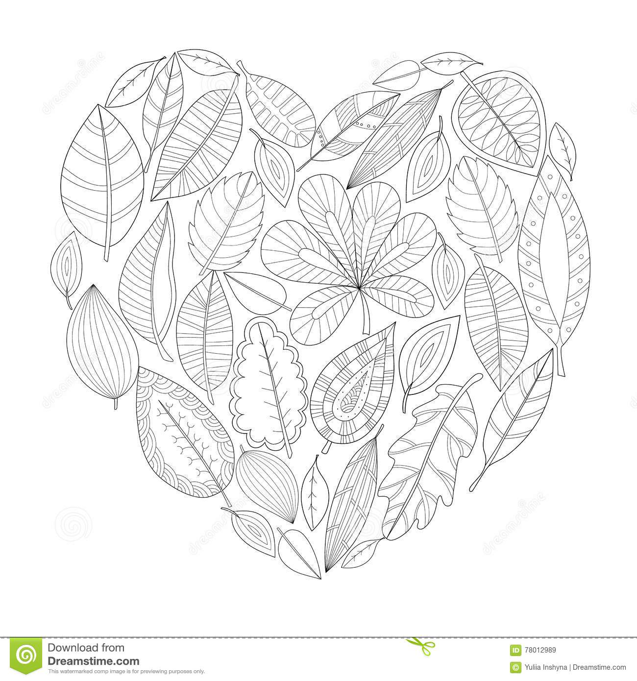 Leaf Templates & Leaf Coloring Pages for Kids | Leaf Printables | 800x800