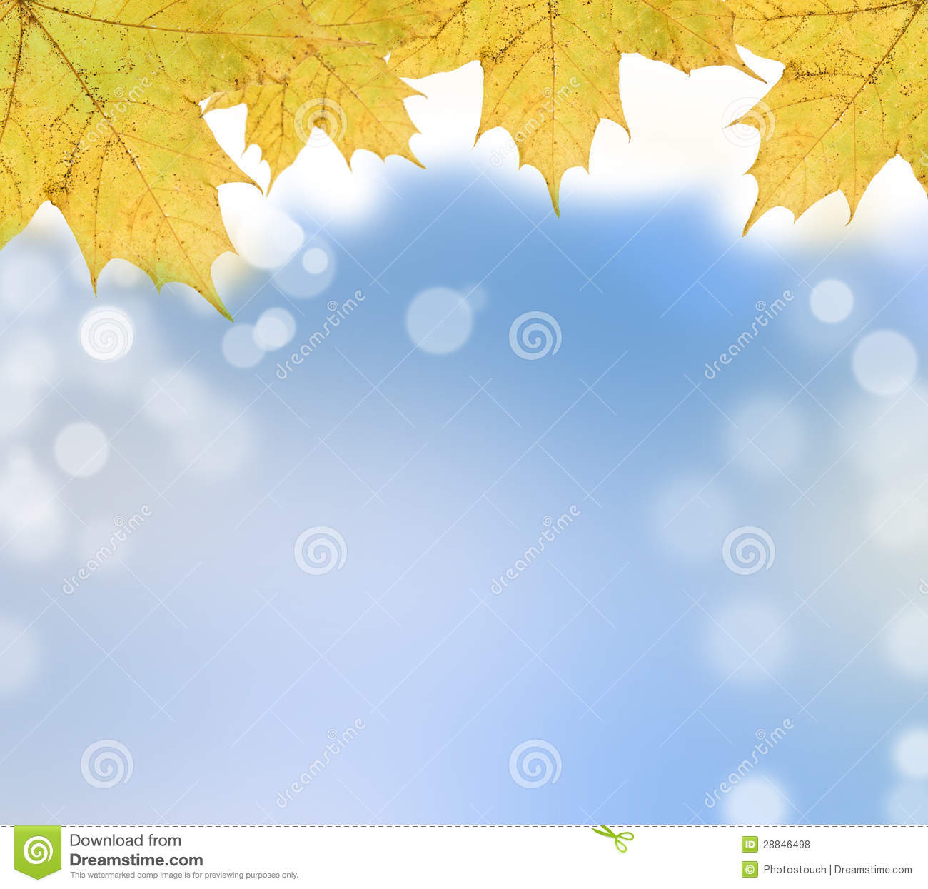 Autumn Leaves On Soft Background Stock Illustration