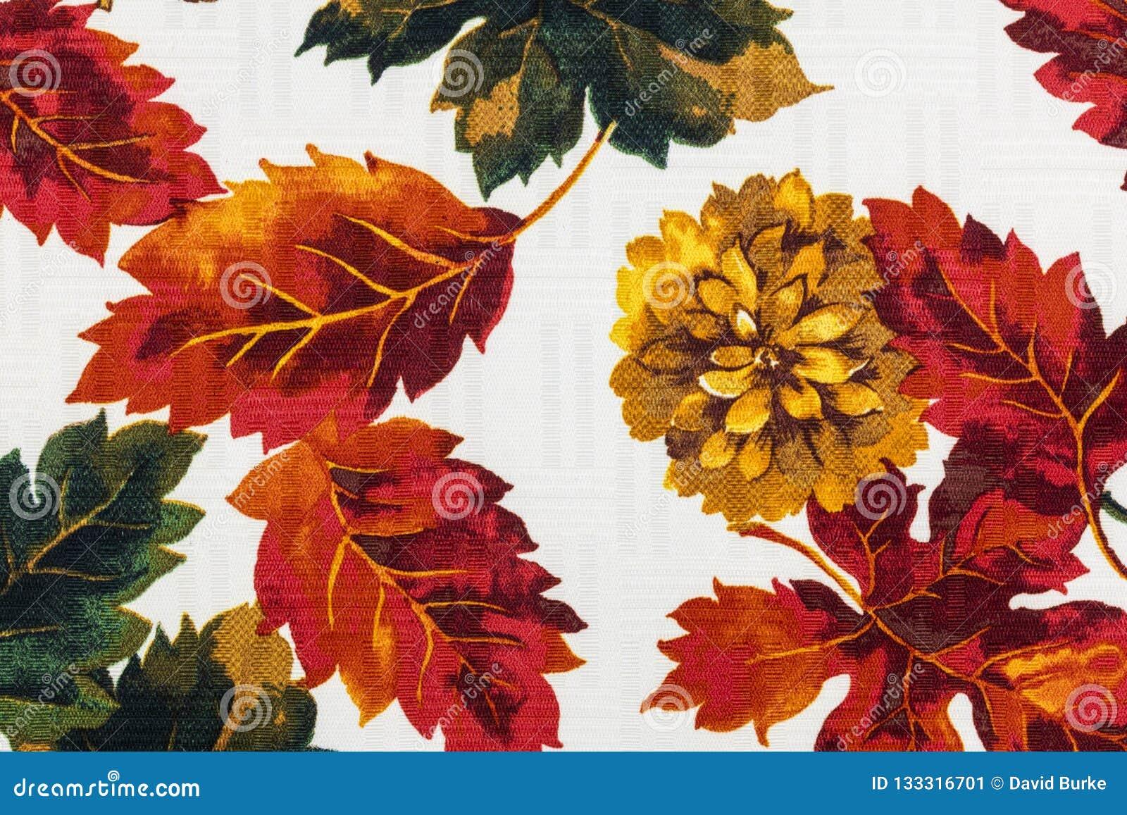 Autumn Leaves Thanksgiving Season Scenery Stock Image