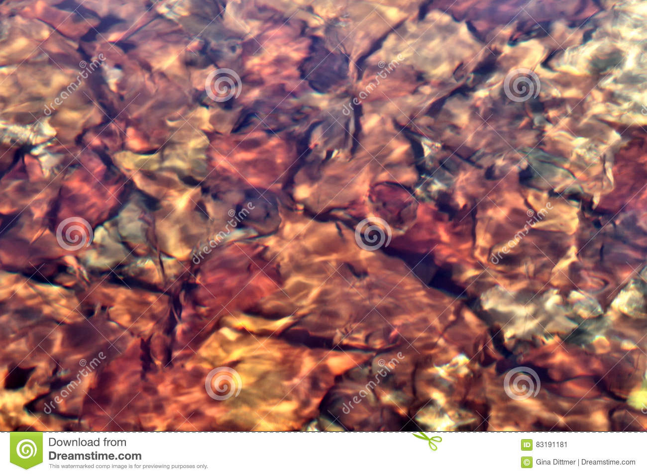 Autumn Leaves Under Slightly Rippling Water Hit by Sunlight