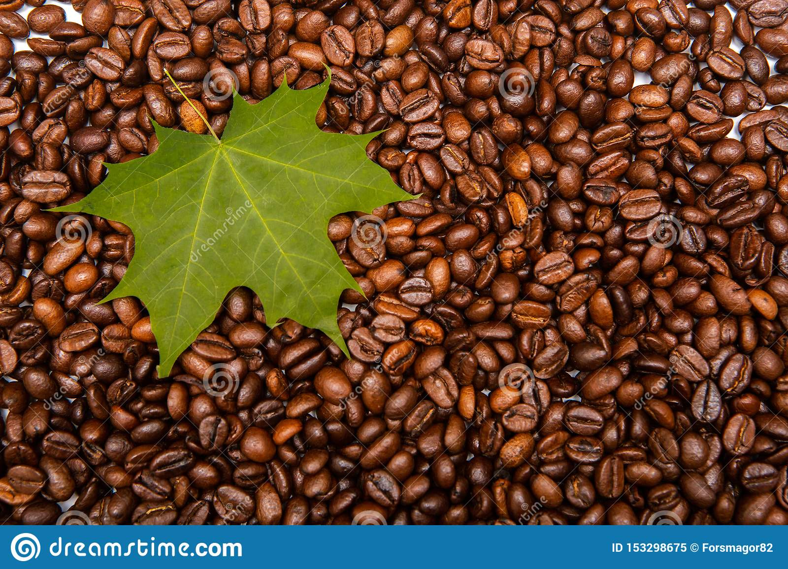 Autumn Maple Leaf On Roasted Coffee Beans. Stock Image ...