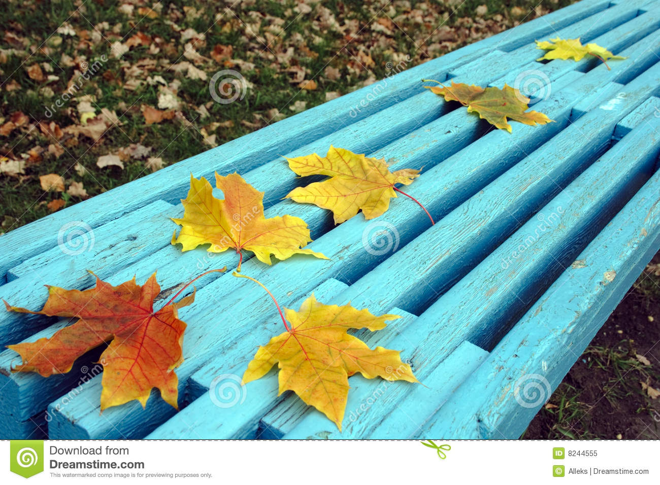 autumn leaves on bench - photo #34