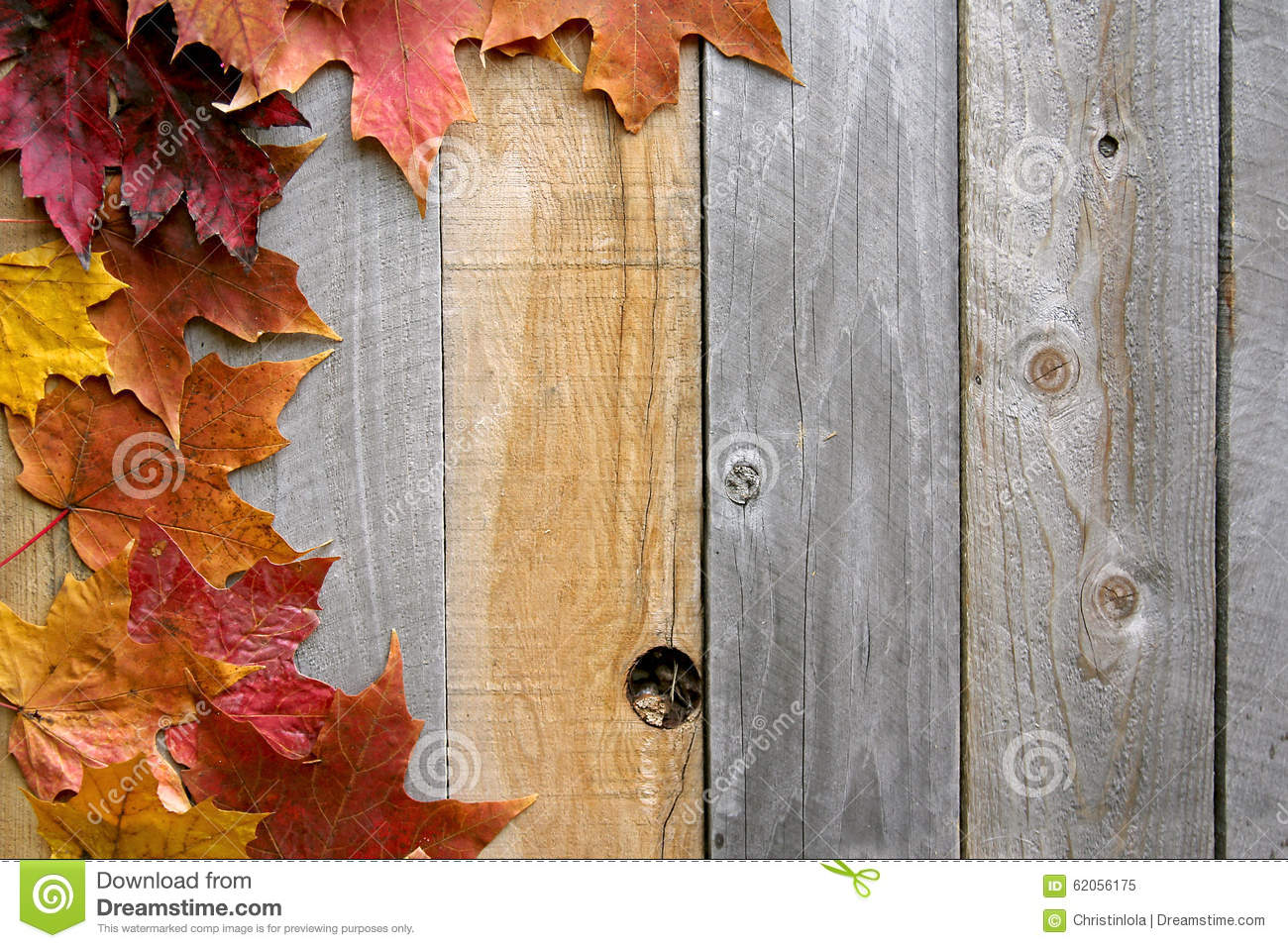 Autumn Maple Leaves Framing Rustic Wood Background Rows Fall