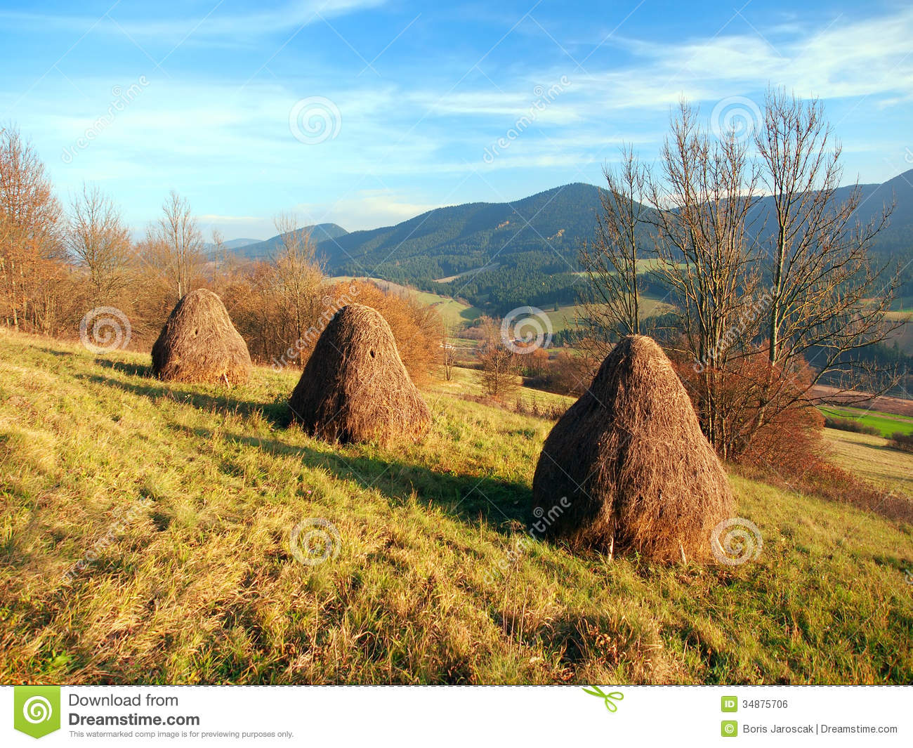 Autumn meadow with haystacks