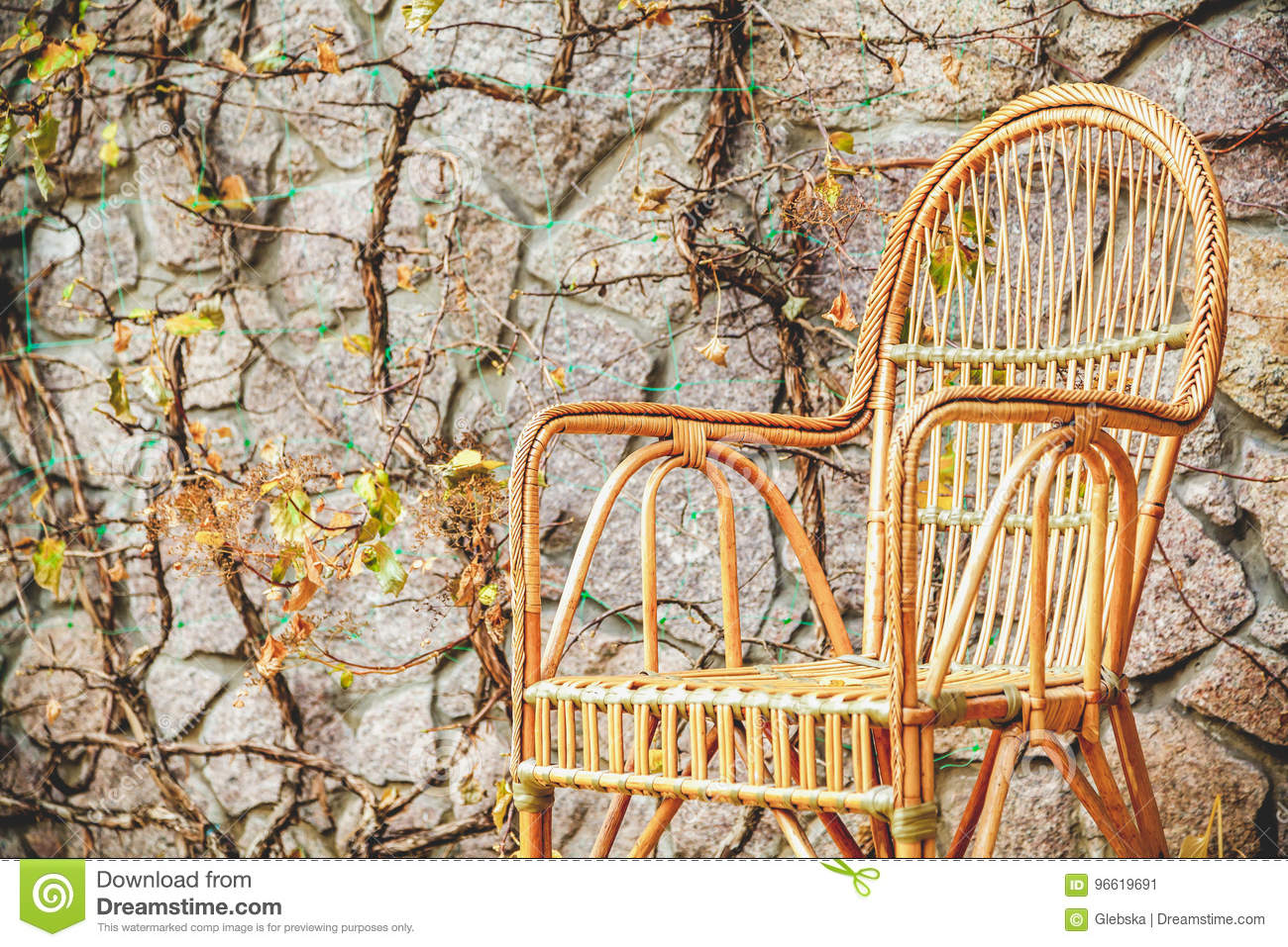 Wicker Chair Stands In Autumn Park Stock Image   Image Of Chair