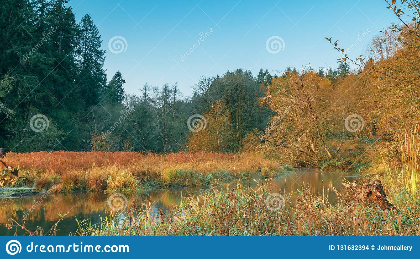 Autumn Morning with Fall Colors and Blue Skies