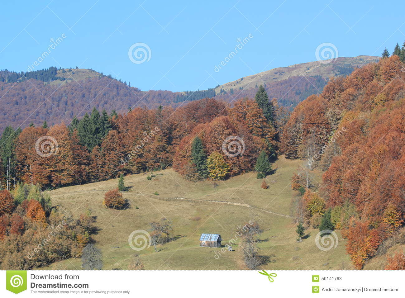 Autumn in the mountains (array Svidovets in Ukrainian Carpathian Mountains)