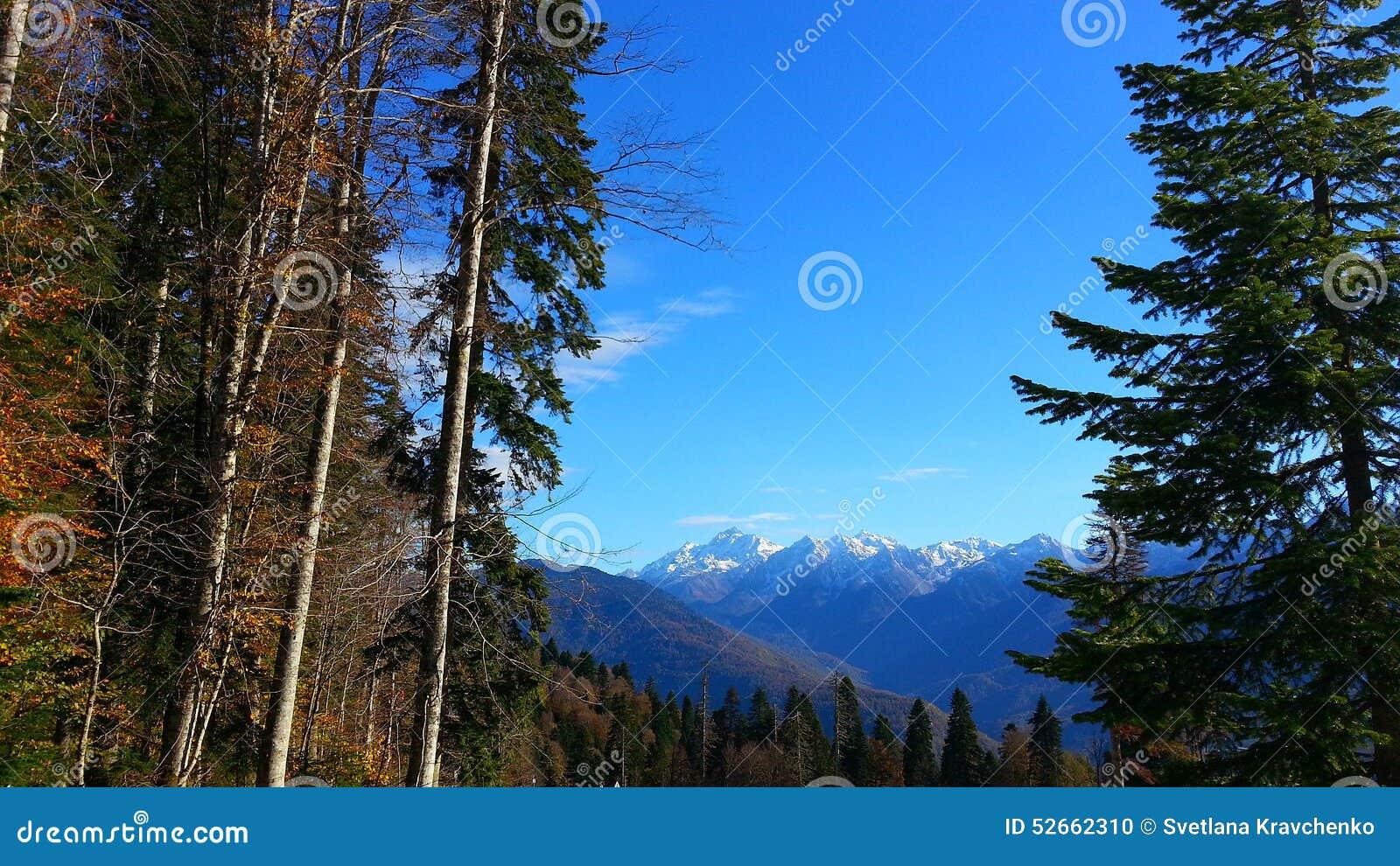 Autumn in the mountains, Krasnaya Polyana, Russia