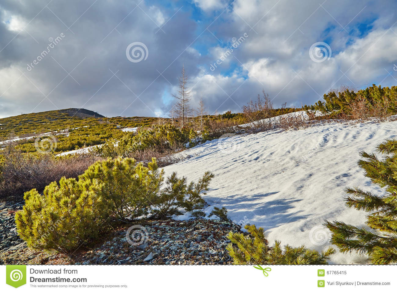 Late spring in mountains. Snow has not thawed yet. Kolyma