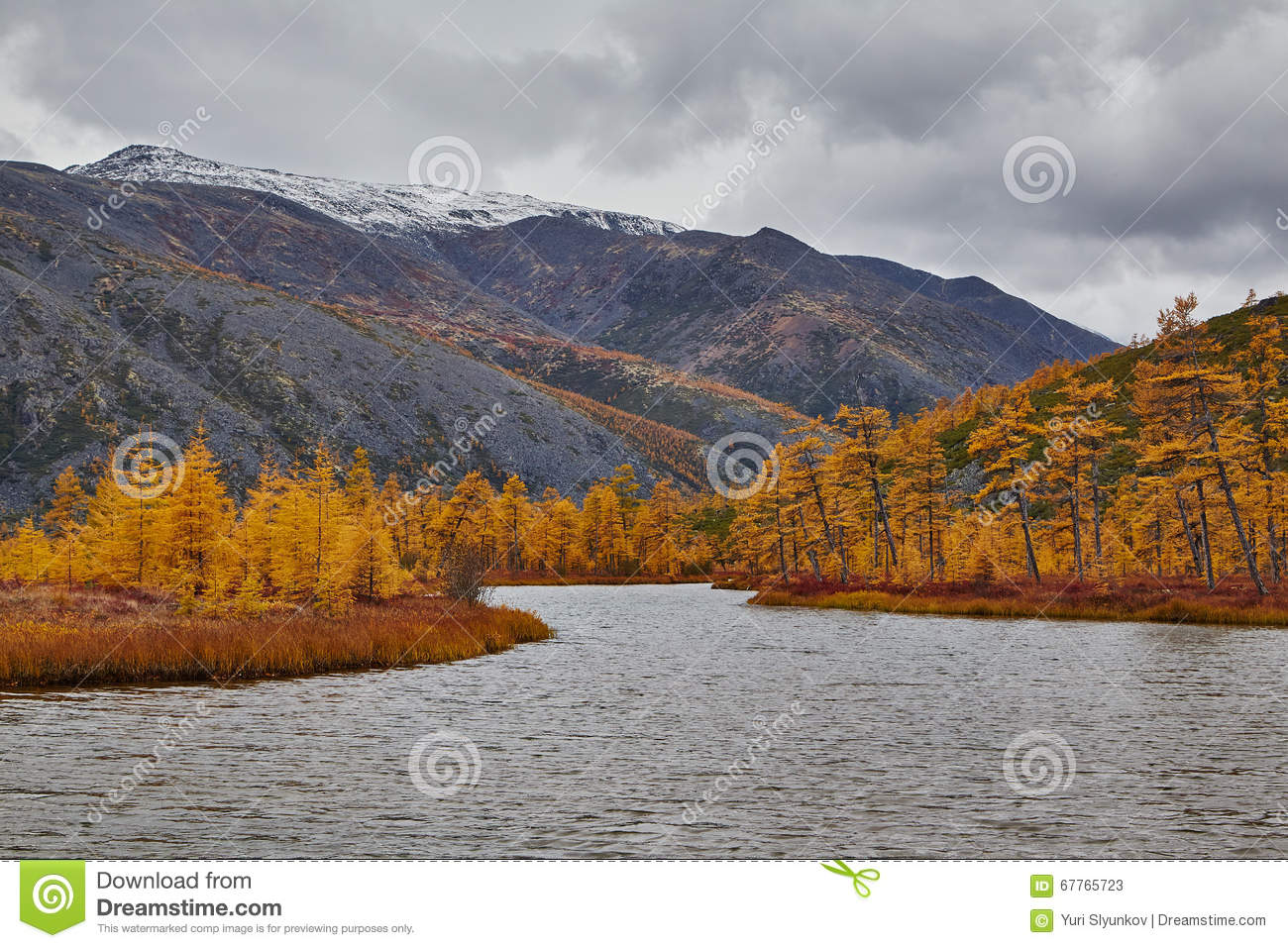 Autumn. A mouth of the stream running into lake of Jack London. Mountains in snow
