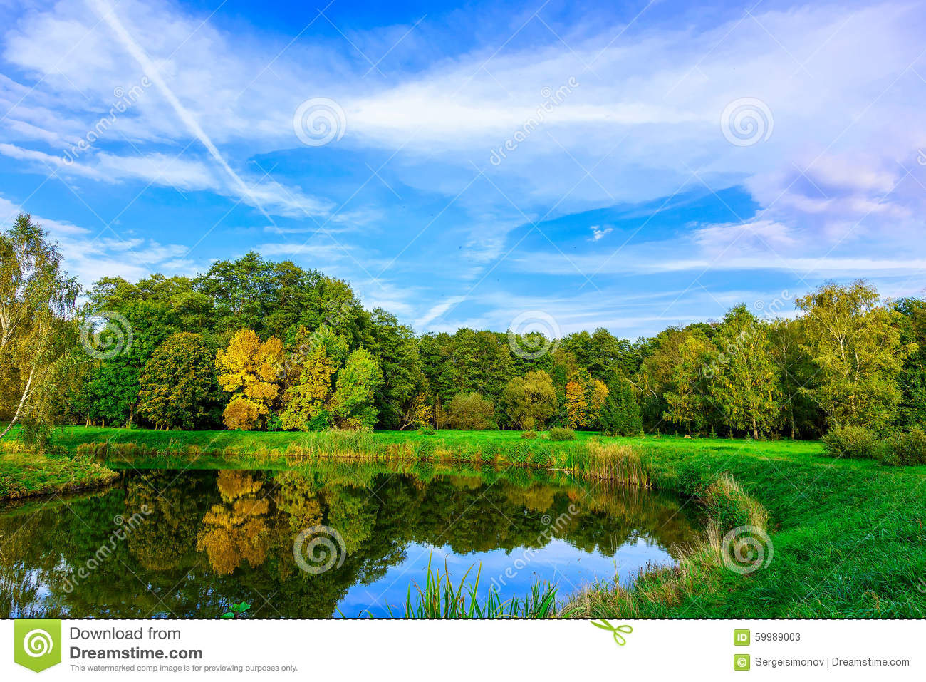 Autumn Nature With Multicolored Trees, Green Grass At Lake Stock ...