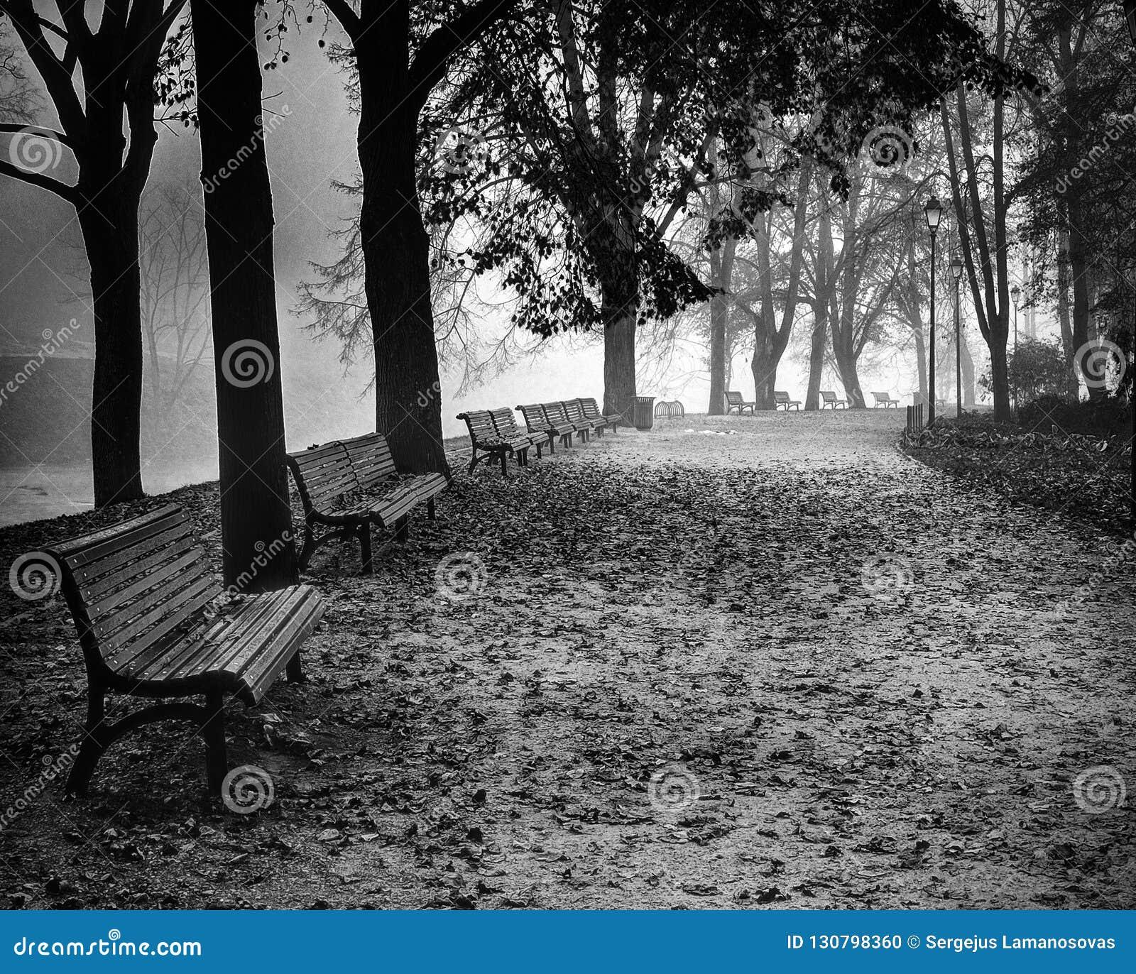 Autumn Nostalgia in Vilnius, Litouwen