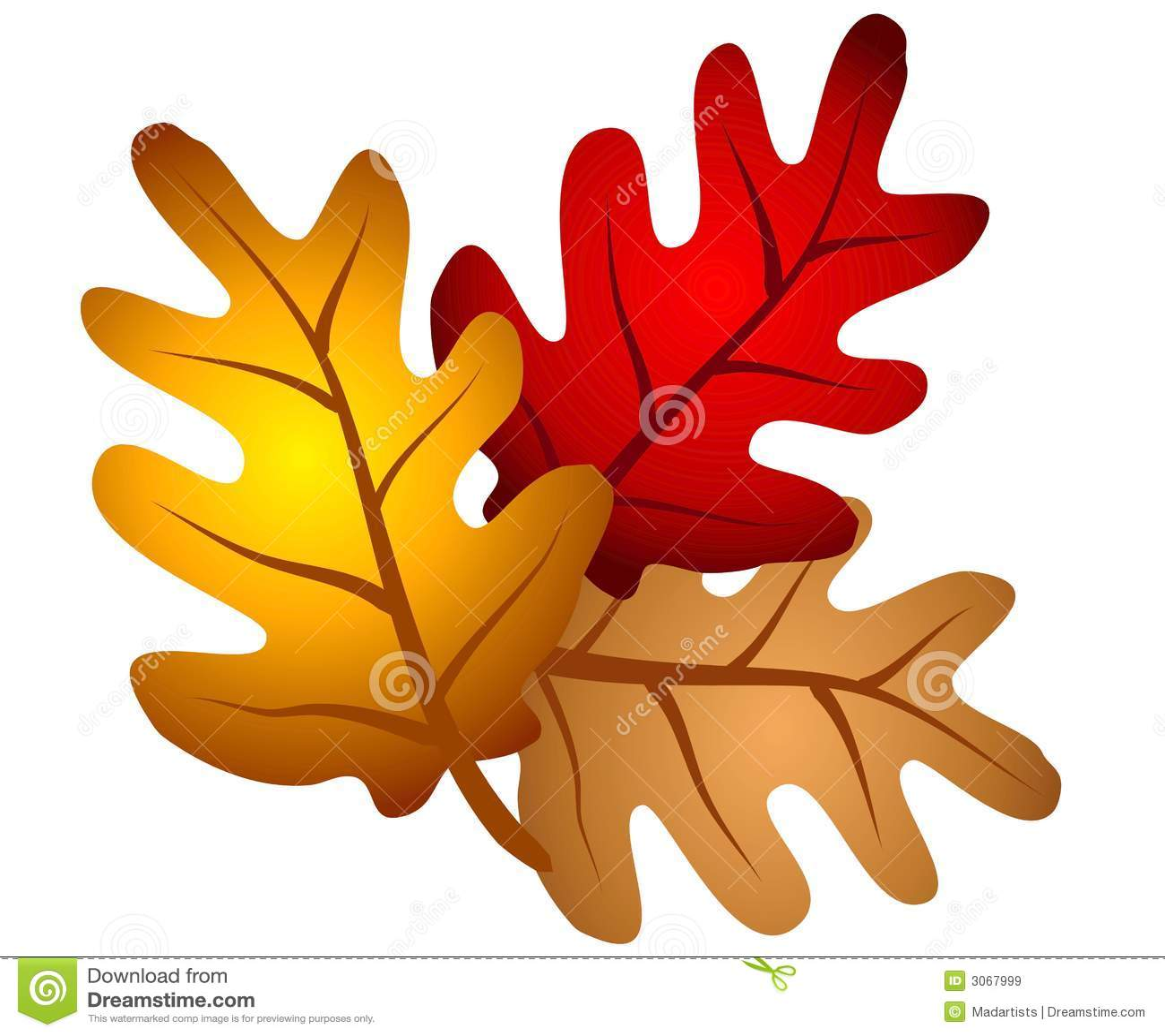 Autumn Oak Tree Leaves Clipart Stock Illustration Illustration Of
