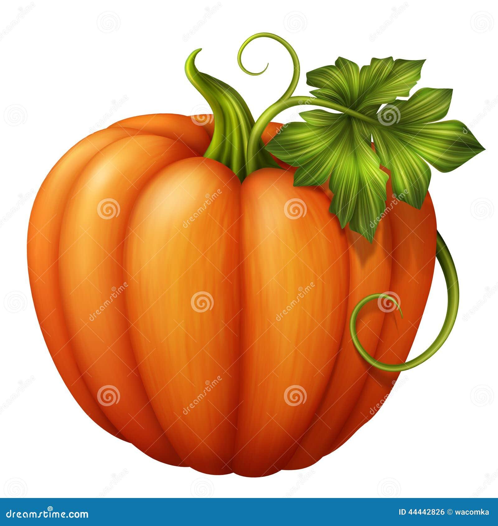 pumpkin heart healthy