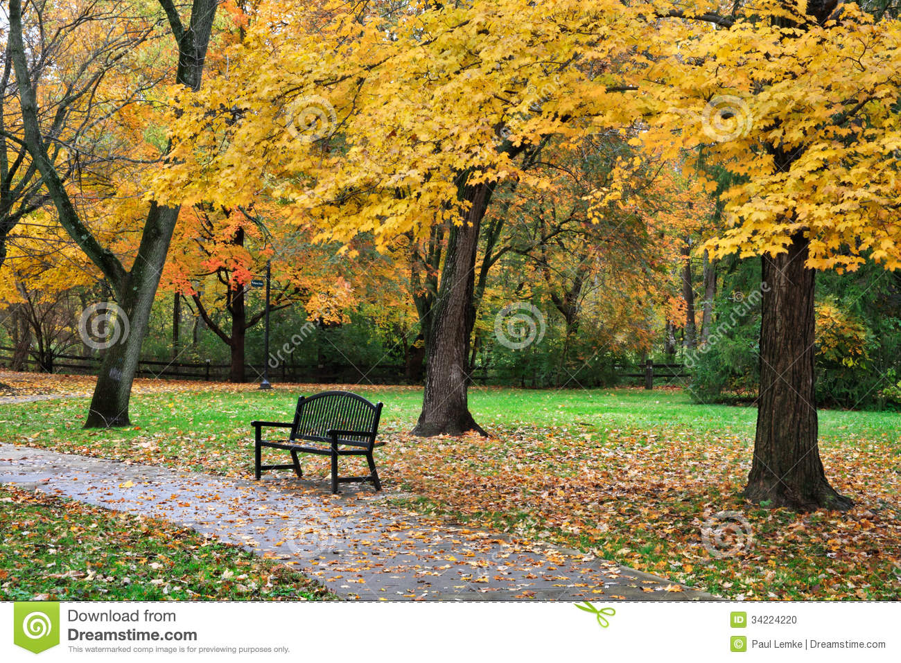 Autumn Park Bench
