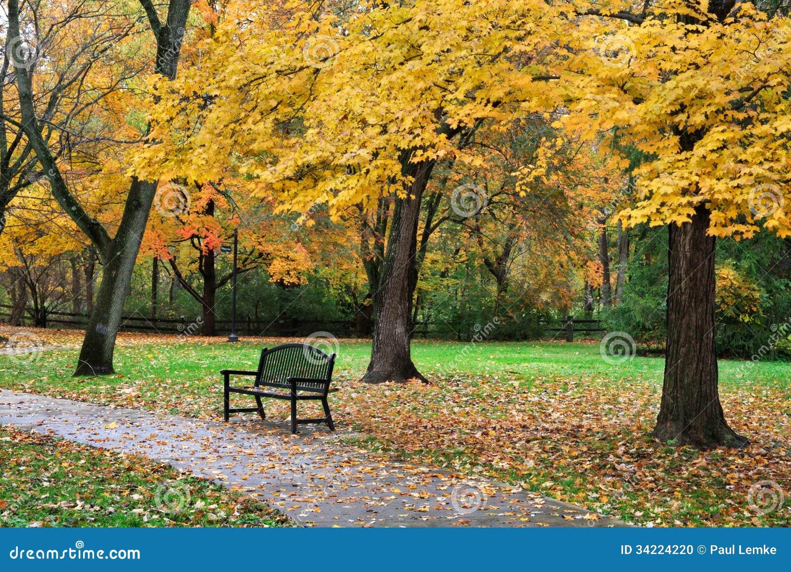 Autumn Park Bench Stock Photo - Image: 34224220