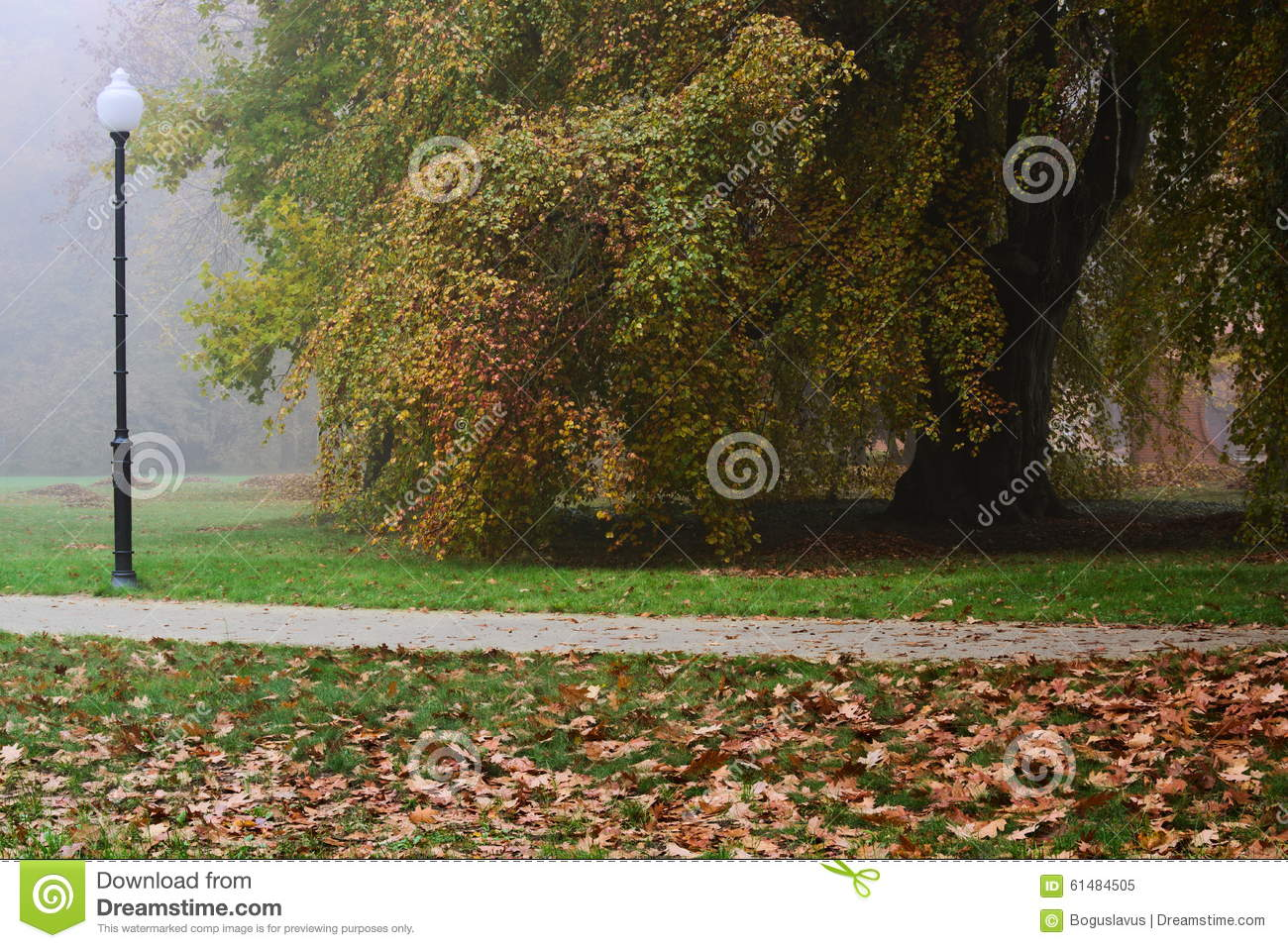 Autumn In The Park Stock Photo Image 61484505