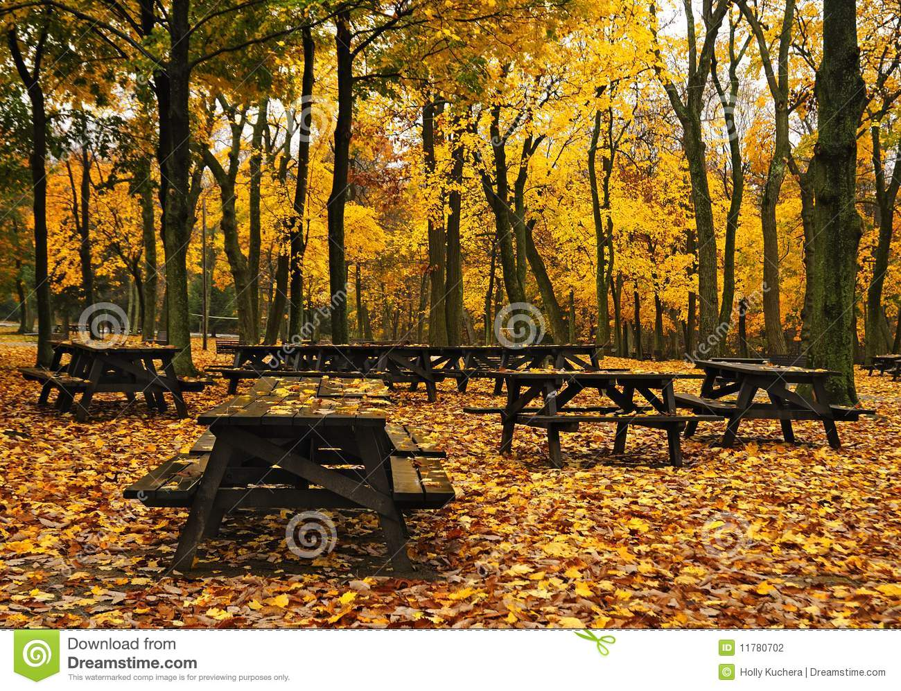 Autumn Picnic Tables Stock Photography Image 11780702