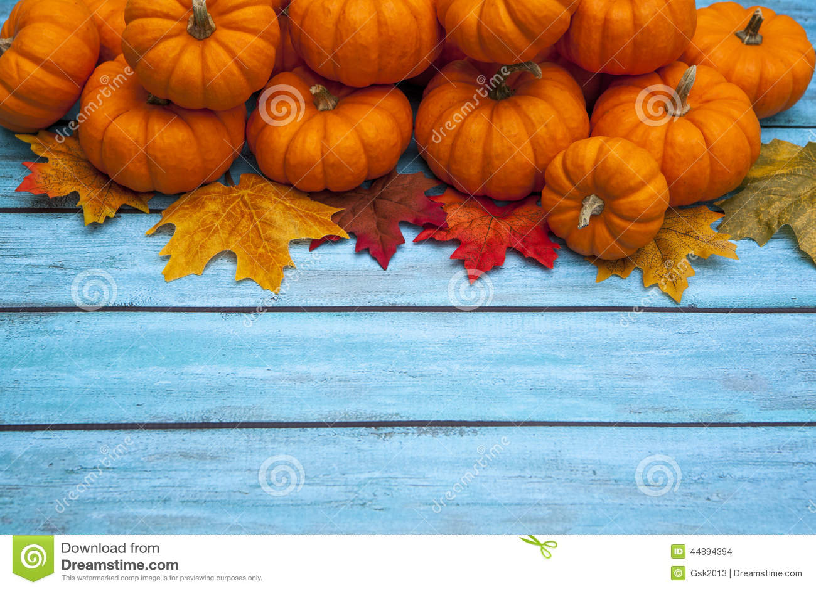 autumn pumpkin thanksgiving background stock photo image of