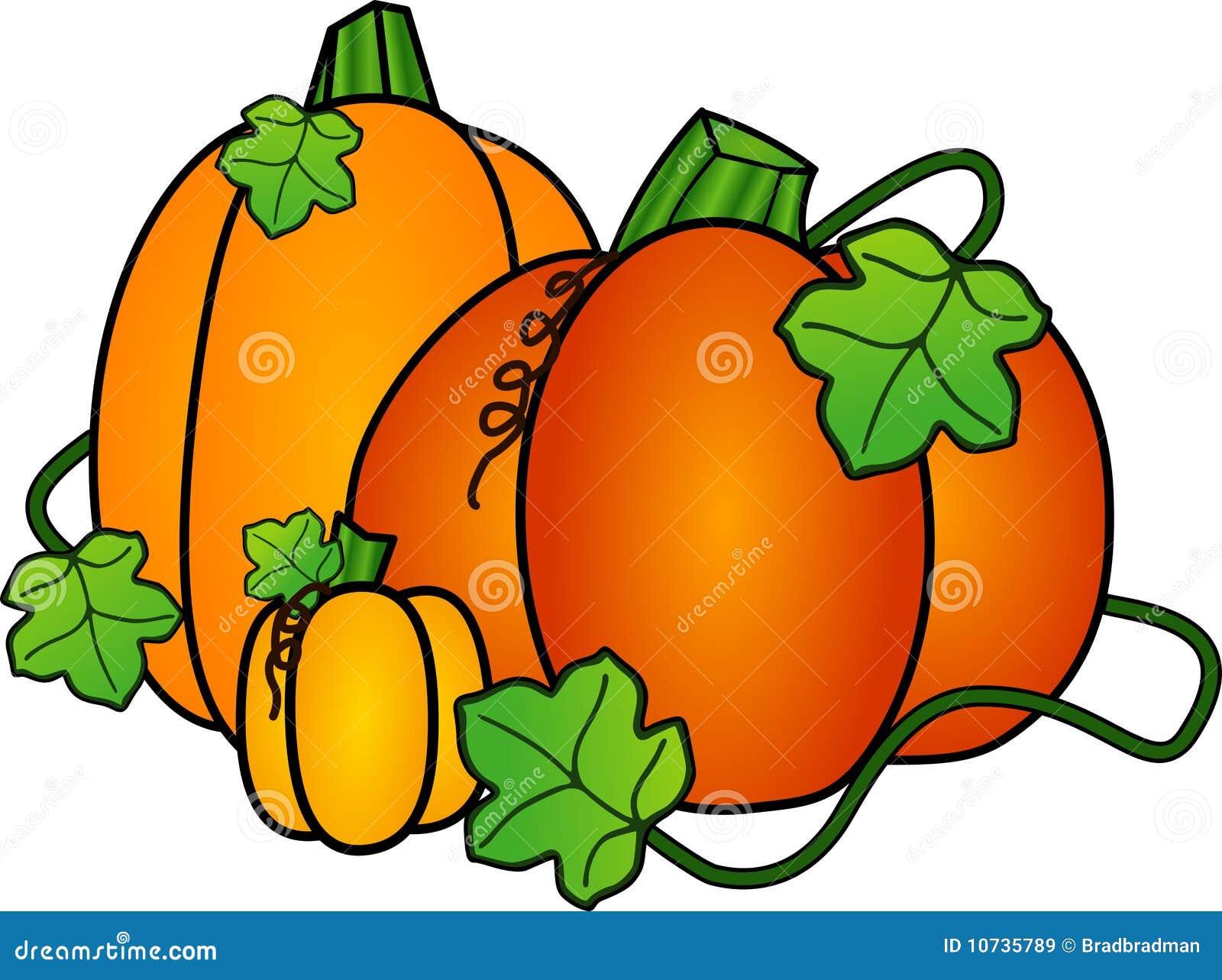 autumn pumpkins stock illustration illustration of october 10735789 rh dreamstime com clipart of pumpkins on the vine clipart of pumpkins and leaves
