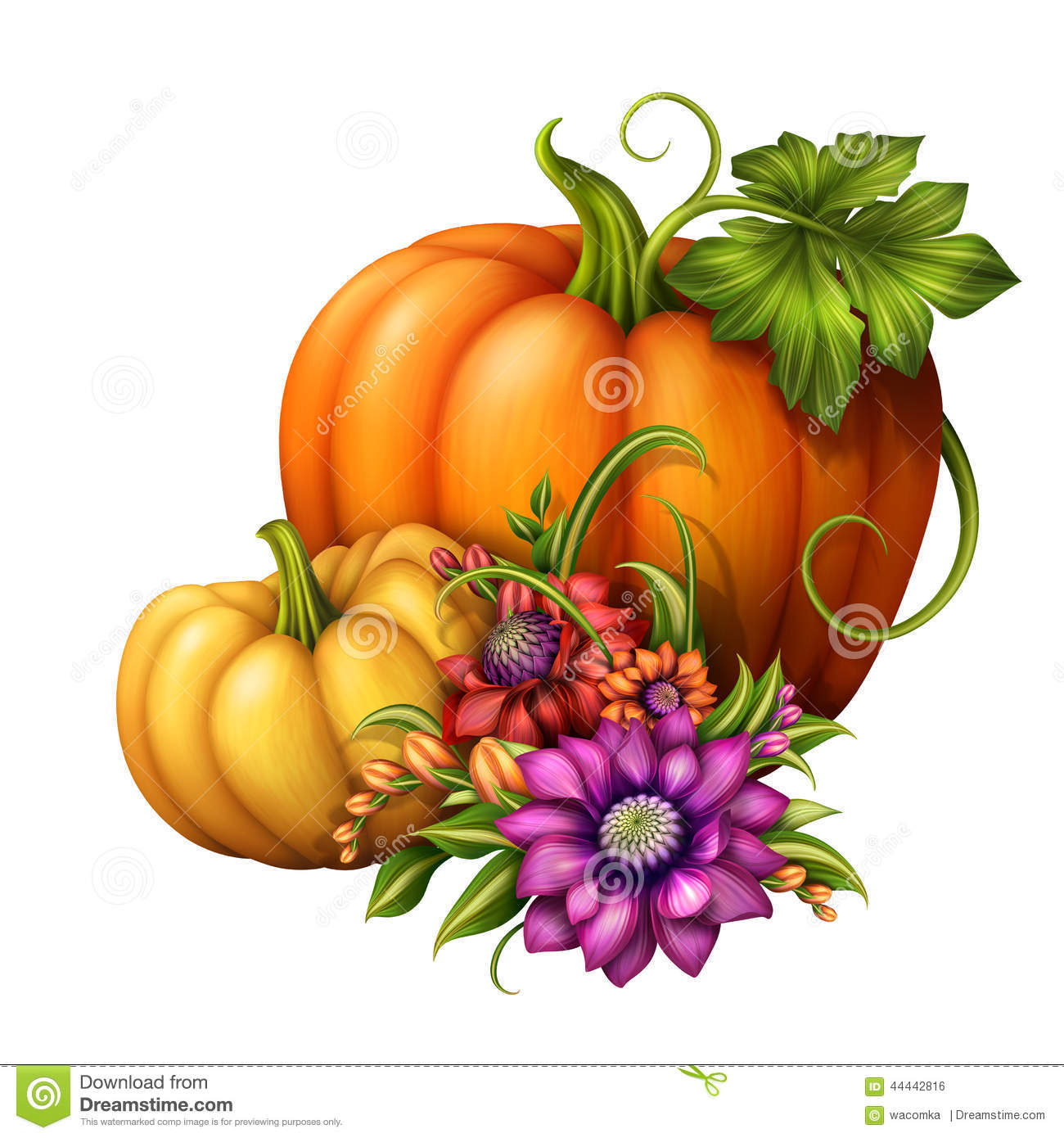 autumn pumpkins with seasonal flowers illustration isolated on