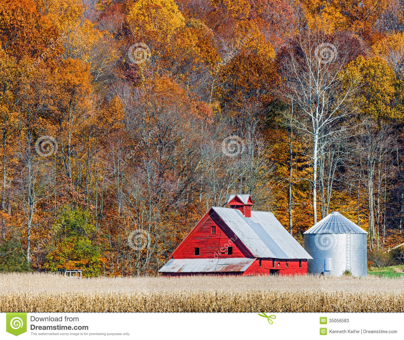 Autumn Red Barn And Hillside Stock Image