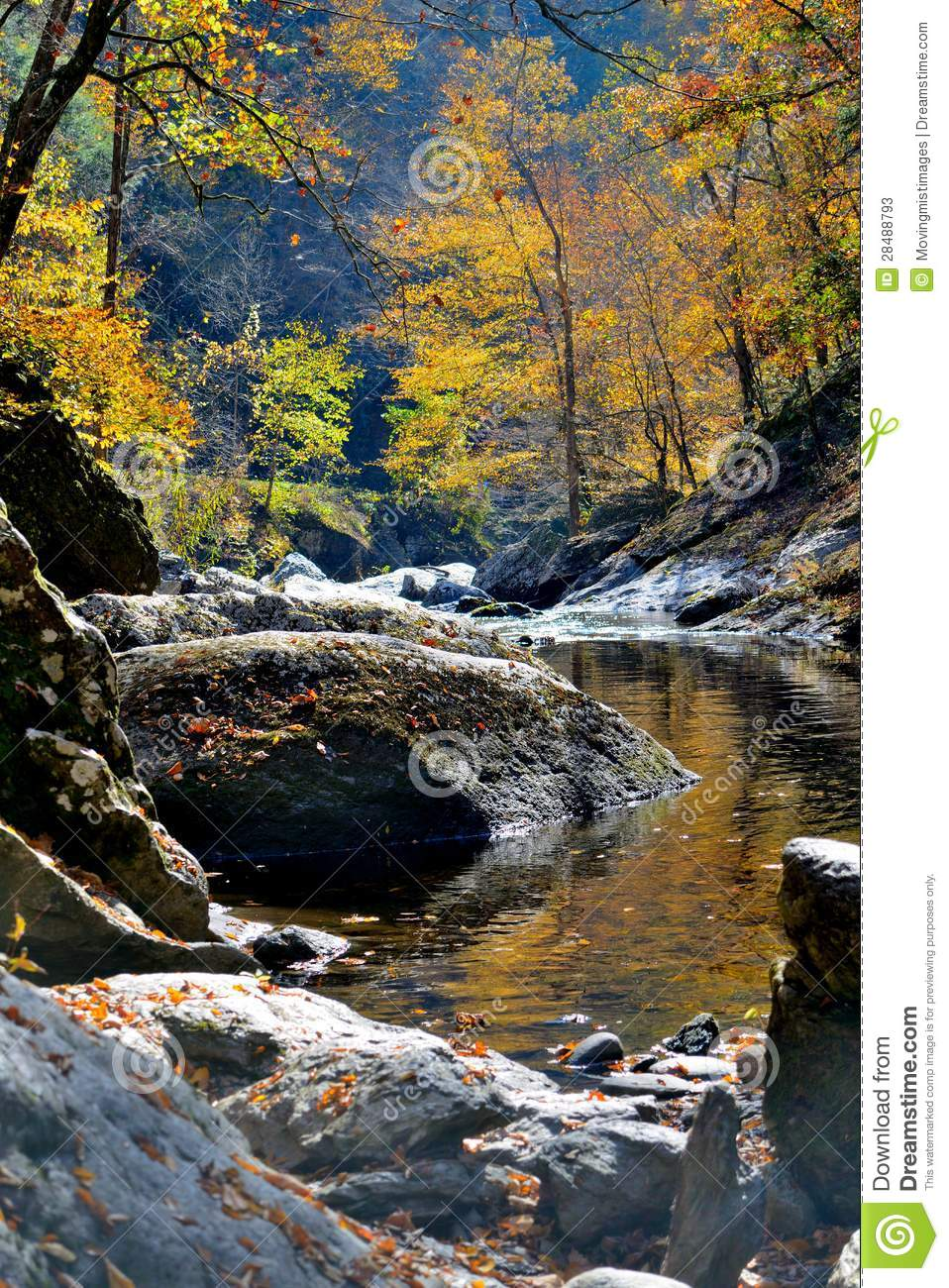 Autumn River In The Woods Stock Photos - Image: 28488793  River