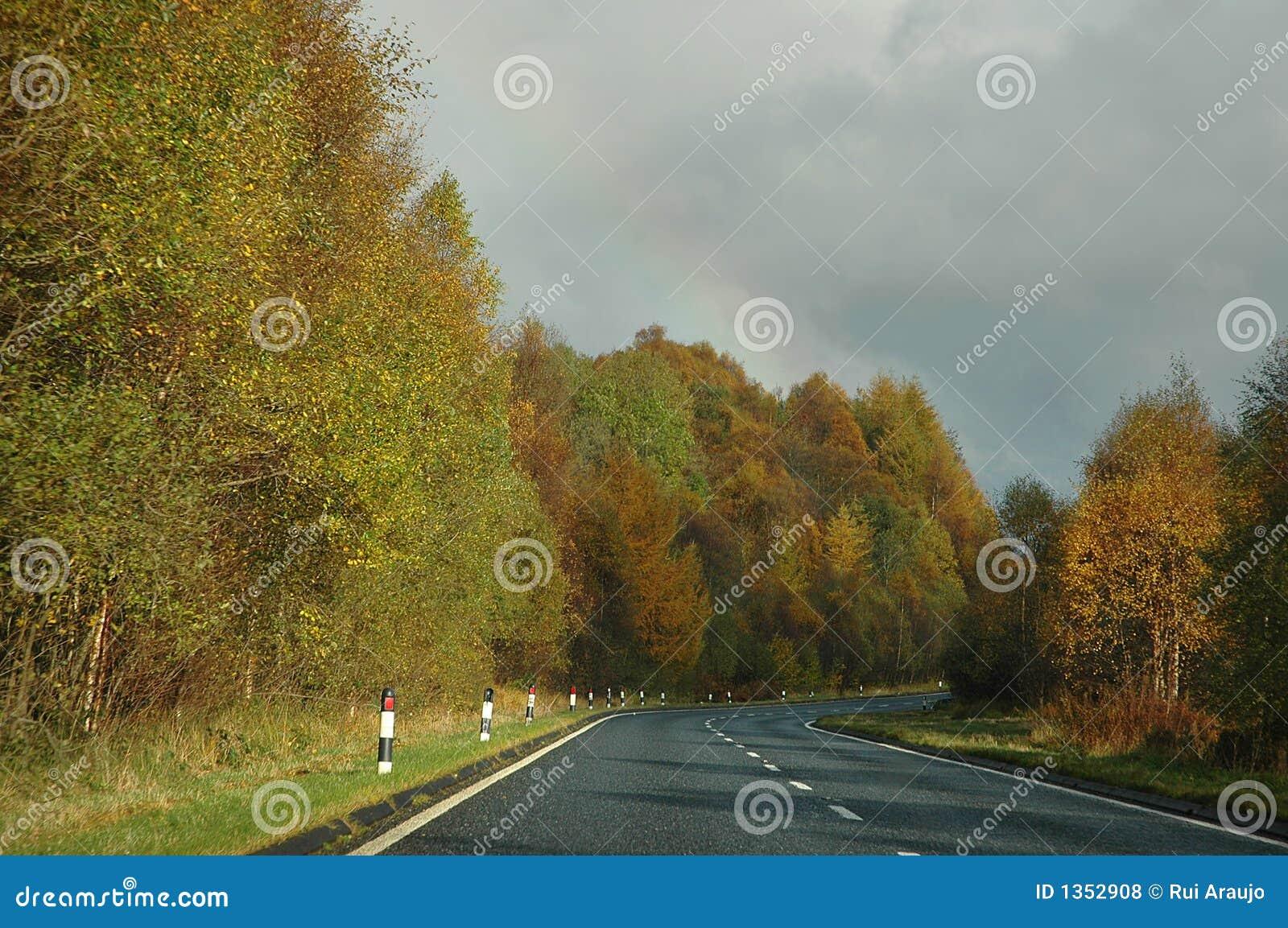 Autumn Rain Is Just Beautiful