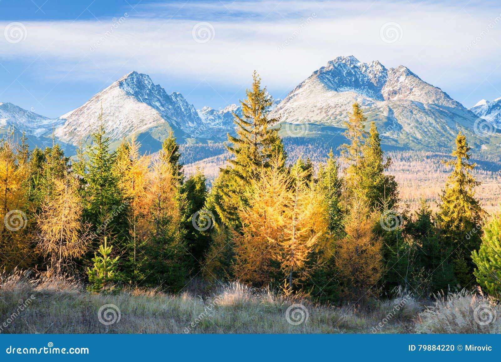 Autumn In Rocky Mountains High Tatras, Slovakia Stock