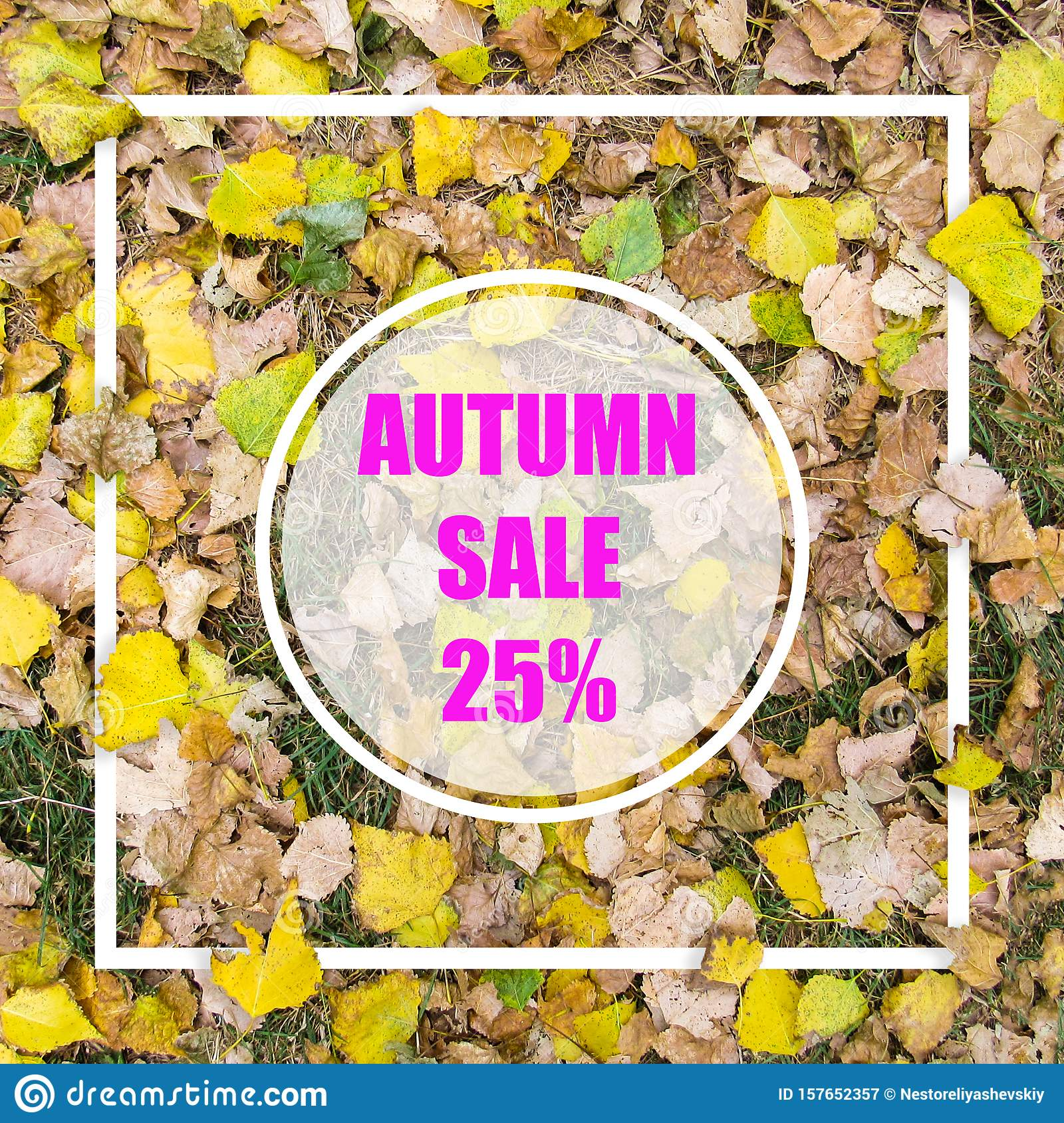 Autumn Sale 25 . Creative layout made with yellow leaves background, square frame. This is a blank for advertising card.
