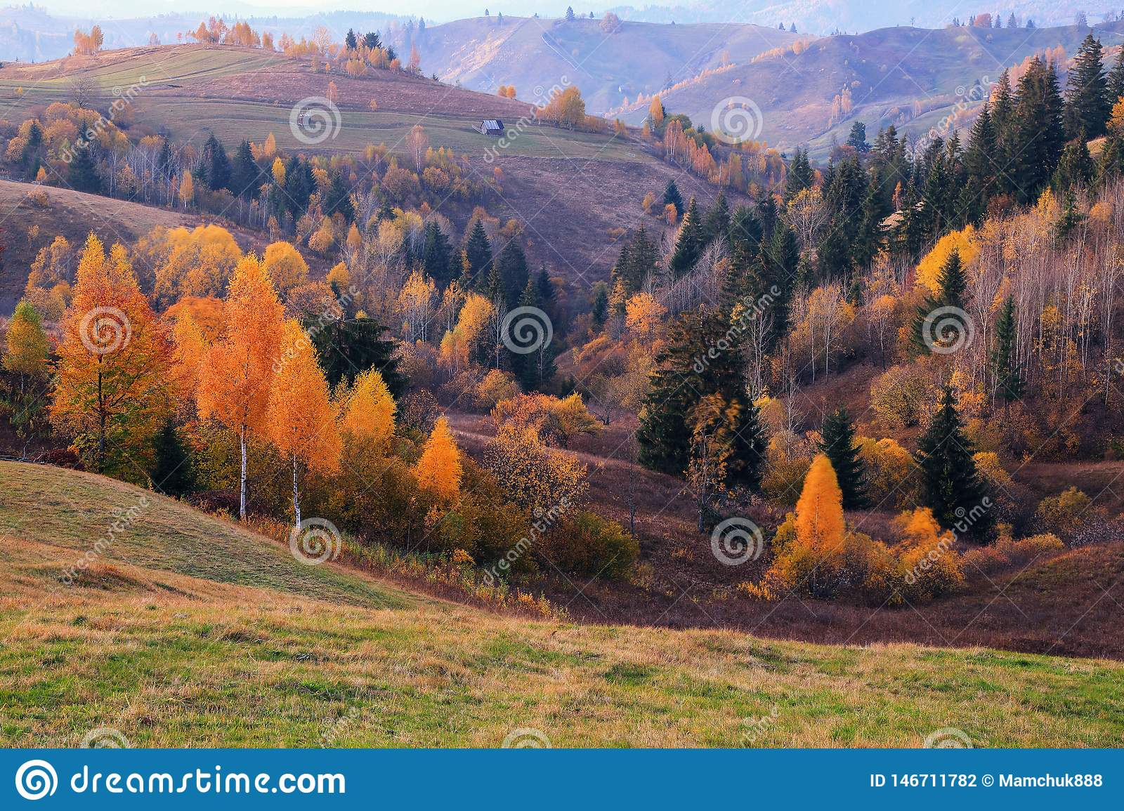 Autumn scene in the sunny day. In the beautiful forest of the trees with the orange, yellow coloured leaves there is an old house.