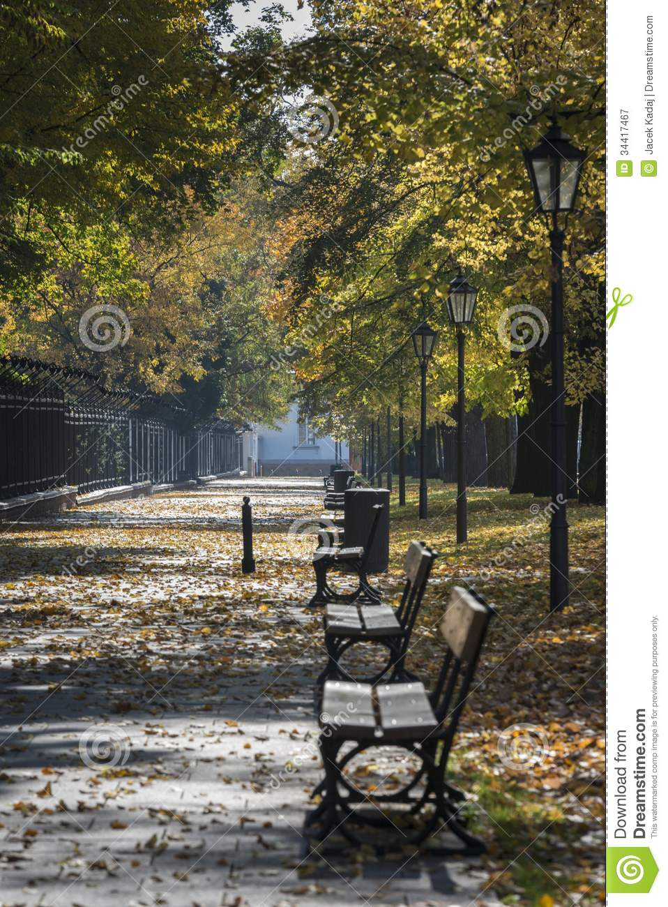 Autumn Scenery Of The Lazienki Park In Warsaw Poland