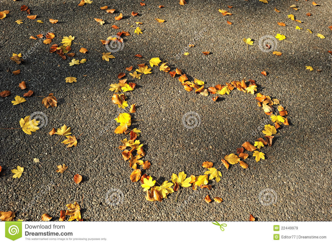 Autumn Season  Love Heart On The Road Stock Image - Image of