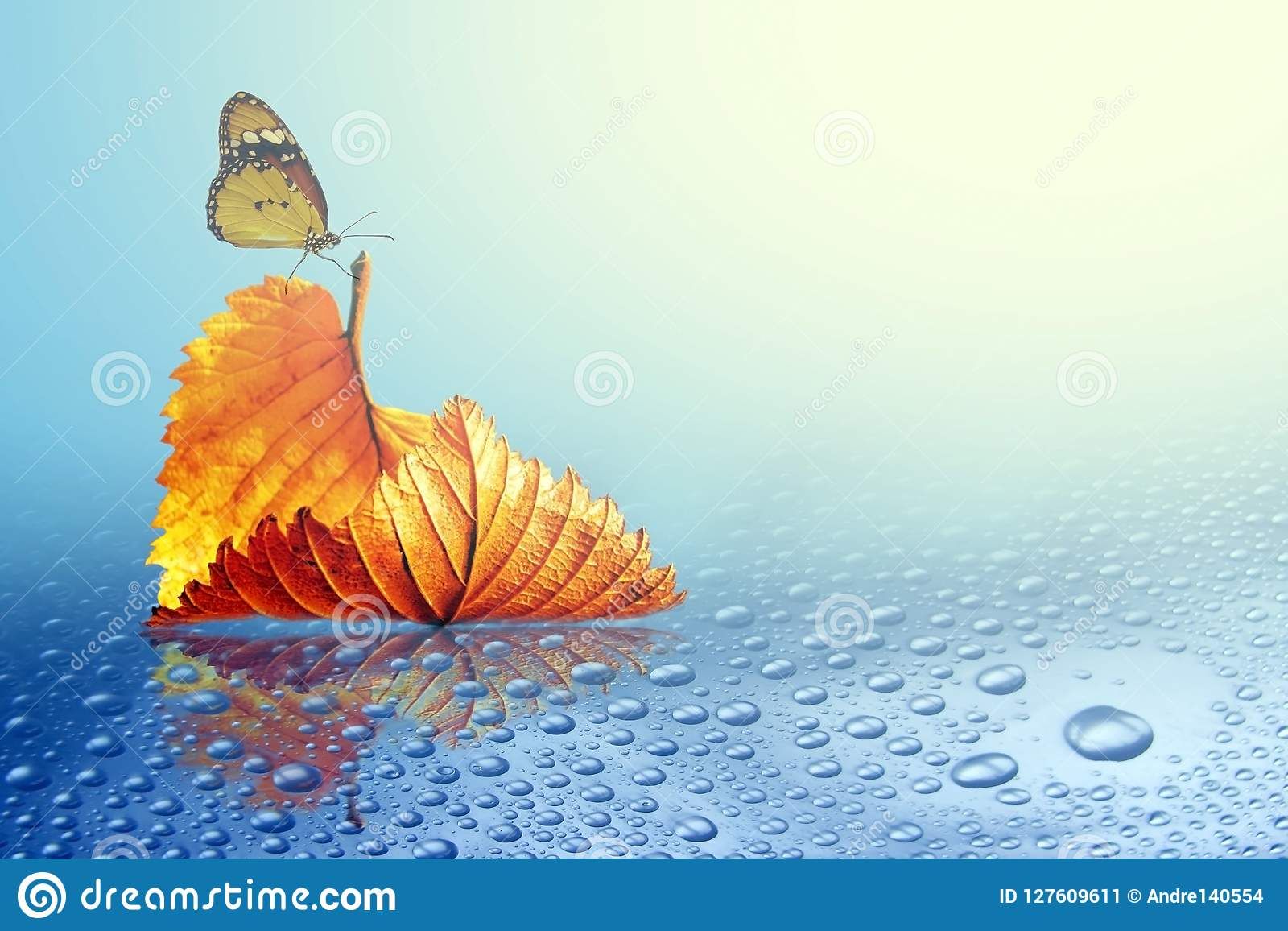 Autumn sheet tree with butterfly