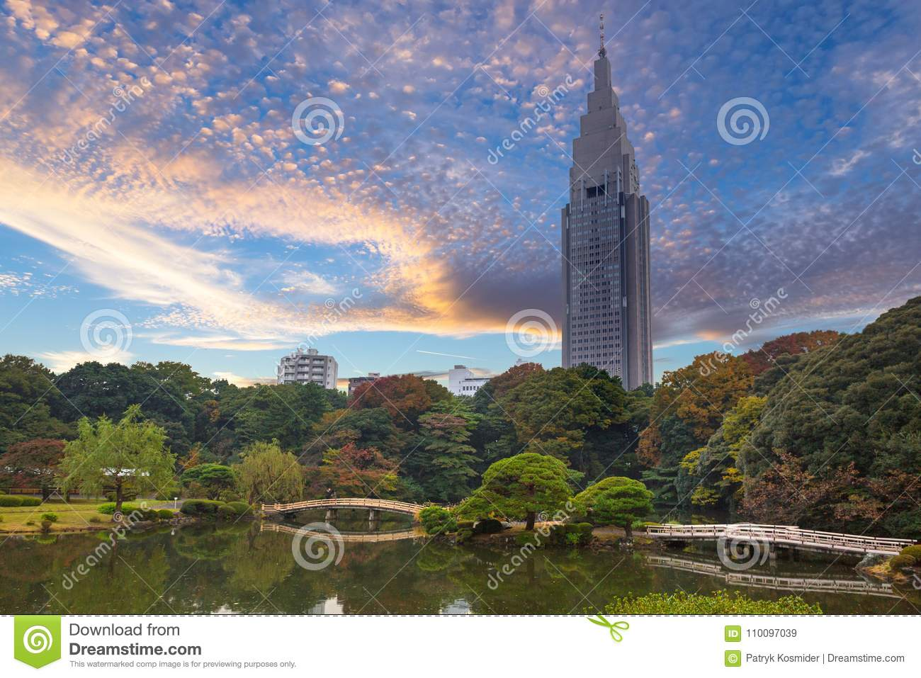 Autumn in the Shinjuku Park